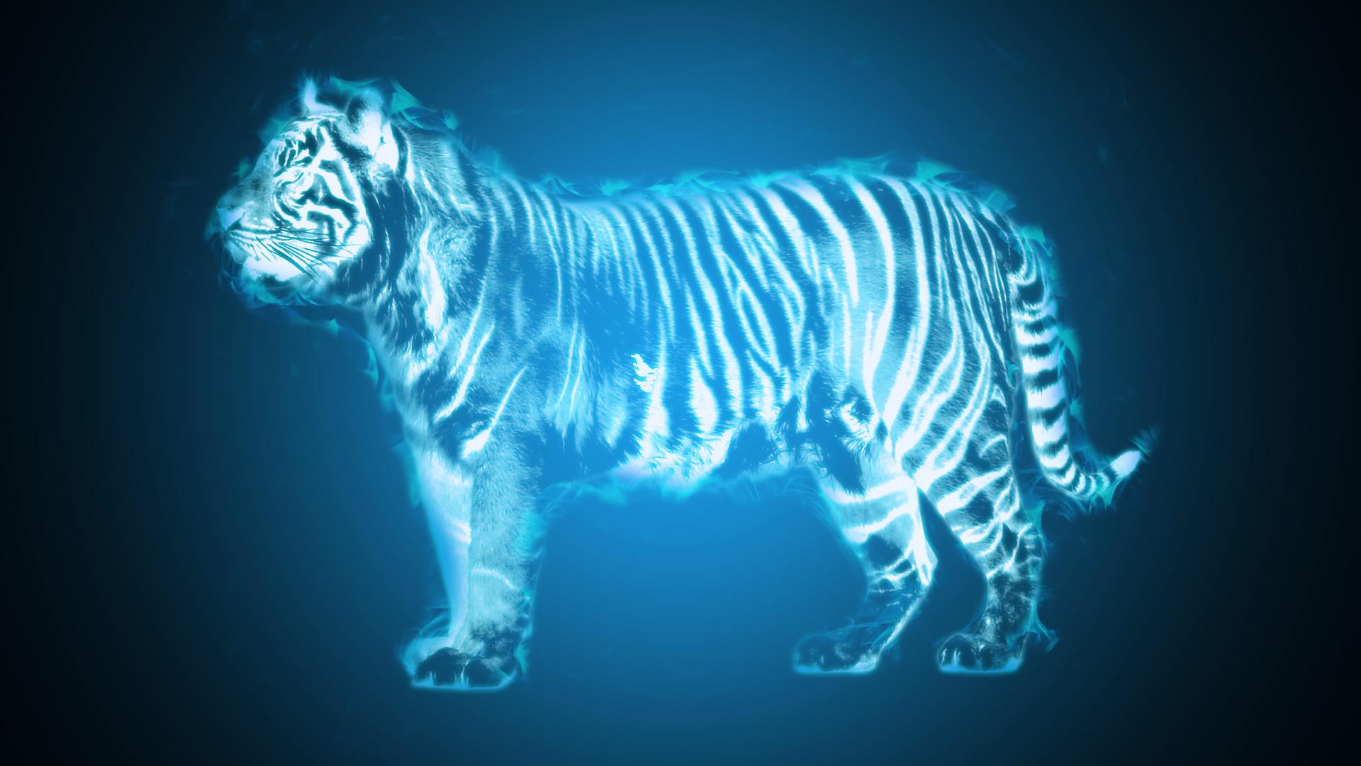 Tiger Blue Fire by Notbleedz Tiger Blue Fire by Notbleedz