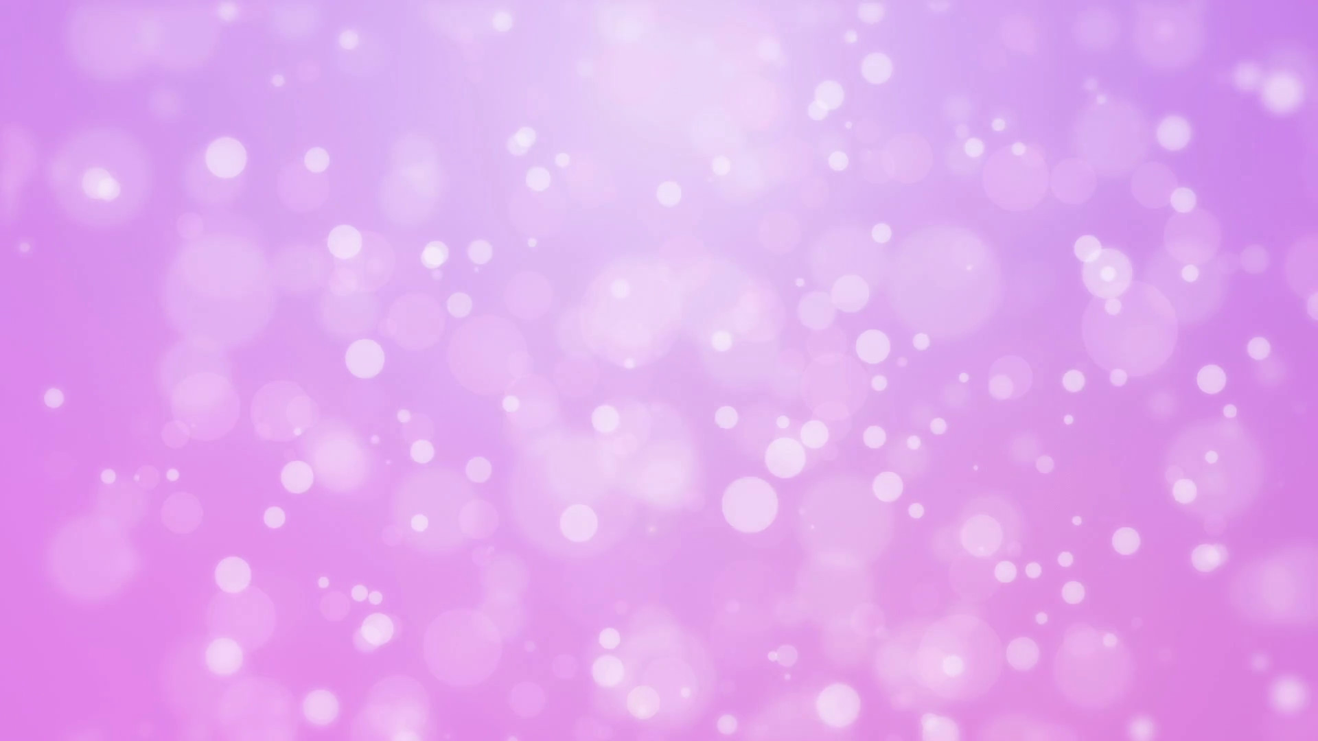 Subscription Library Sweet romantic purple pink gradient animated background  with floating glowing bokeh lights
