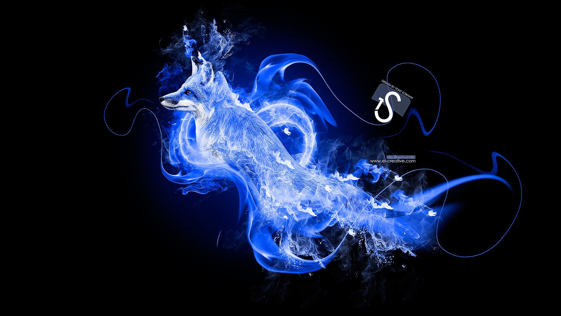 Blue-Fire-Fox-Metamorphosis-2013-HD-Wallpapers-design- …