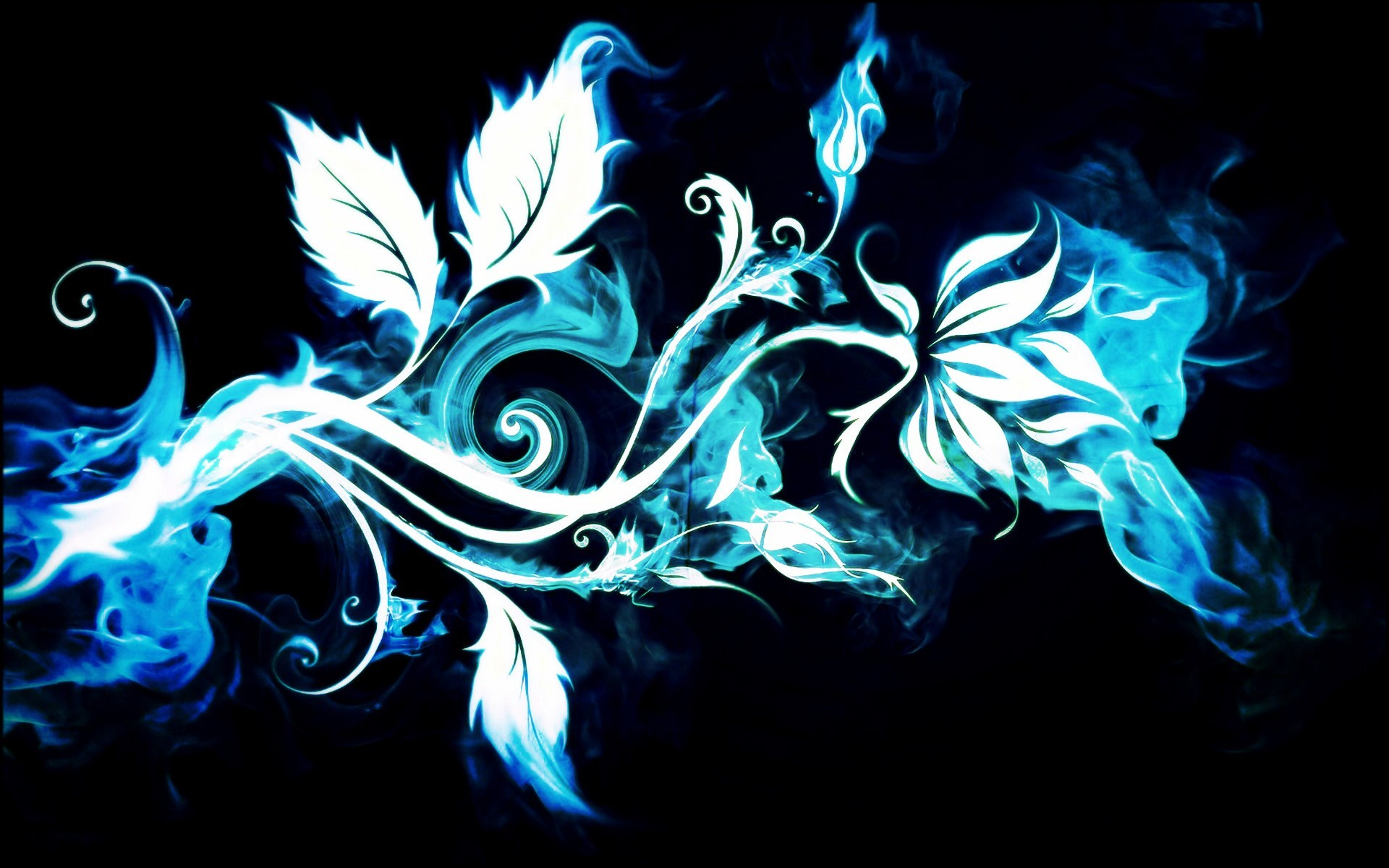 pictures fire flower wallpapers hd