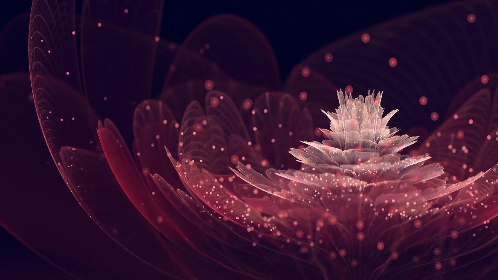 Dark maroon flowery abstract desktop wallpapers
