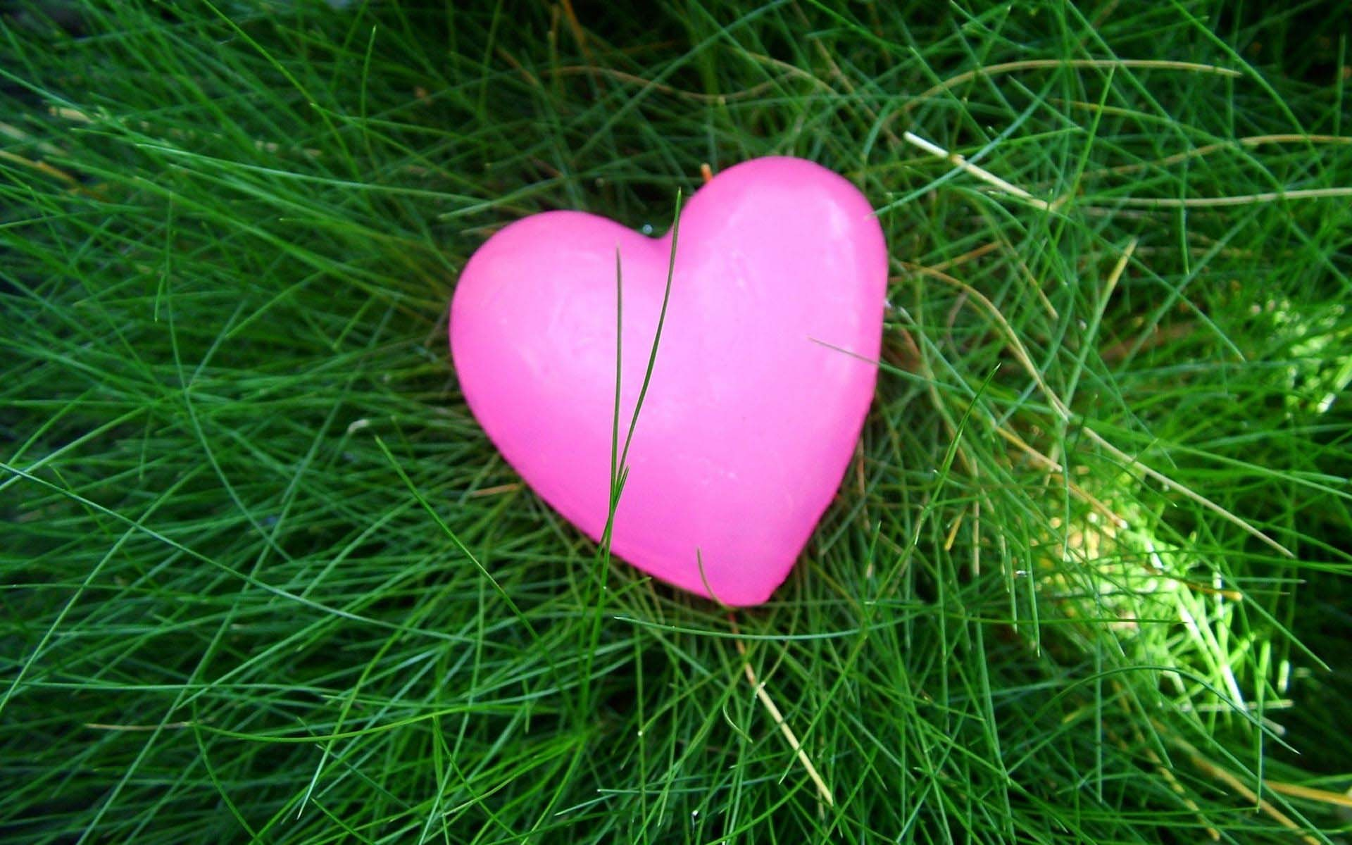 Pink Heart Wallpapers and Photos for Desktop