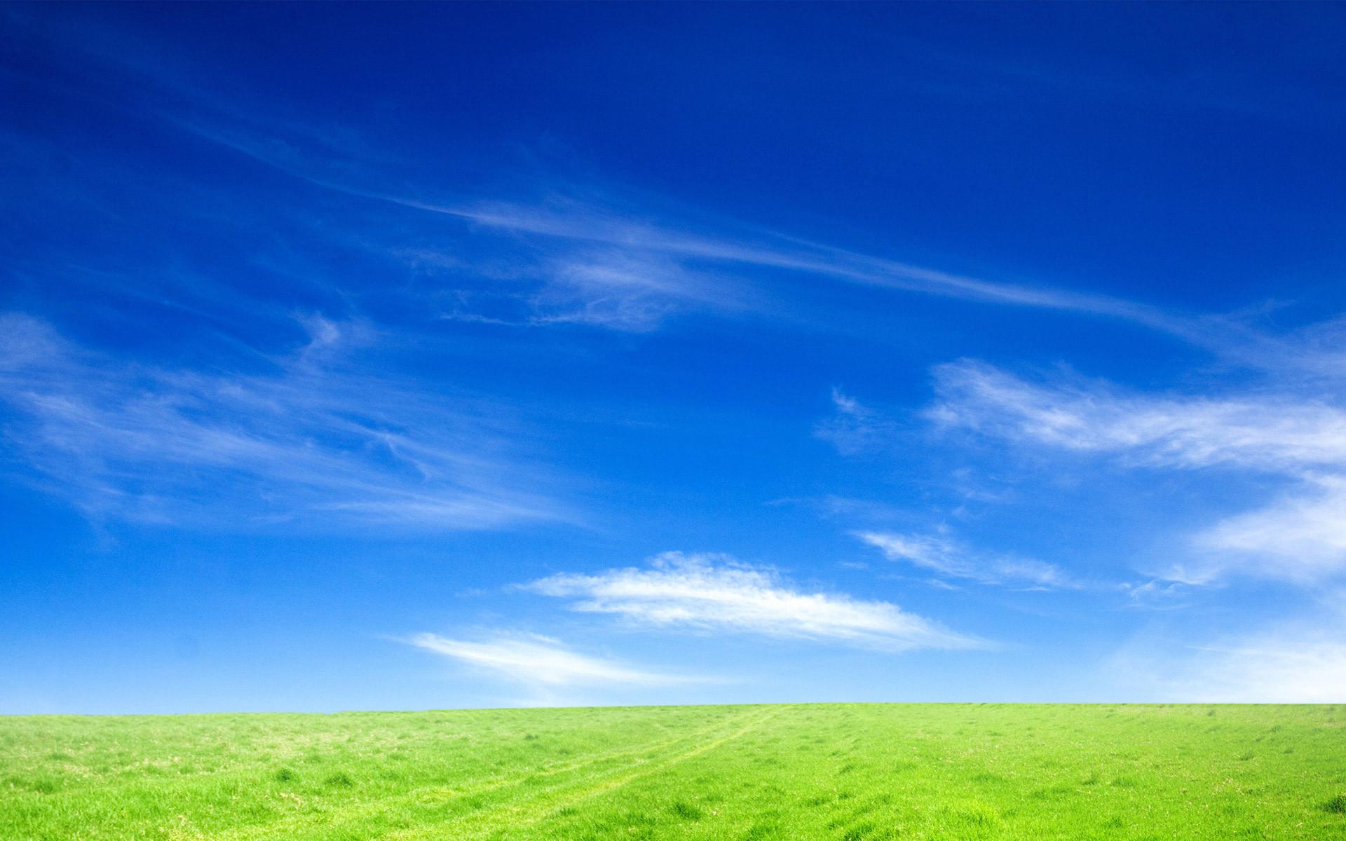 Blue Sky and Green Grass HD wallpaper thumb