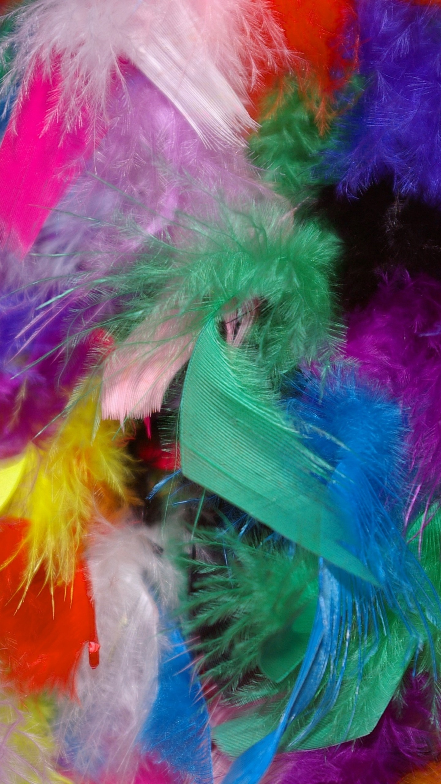 Wallpaper feathers, background, colorful