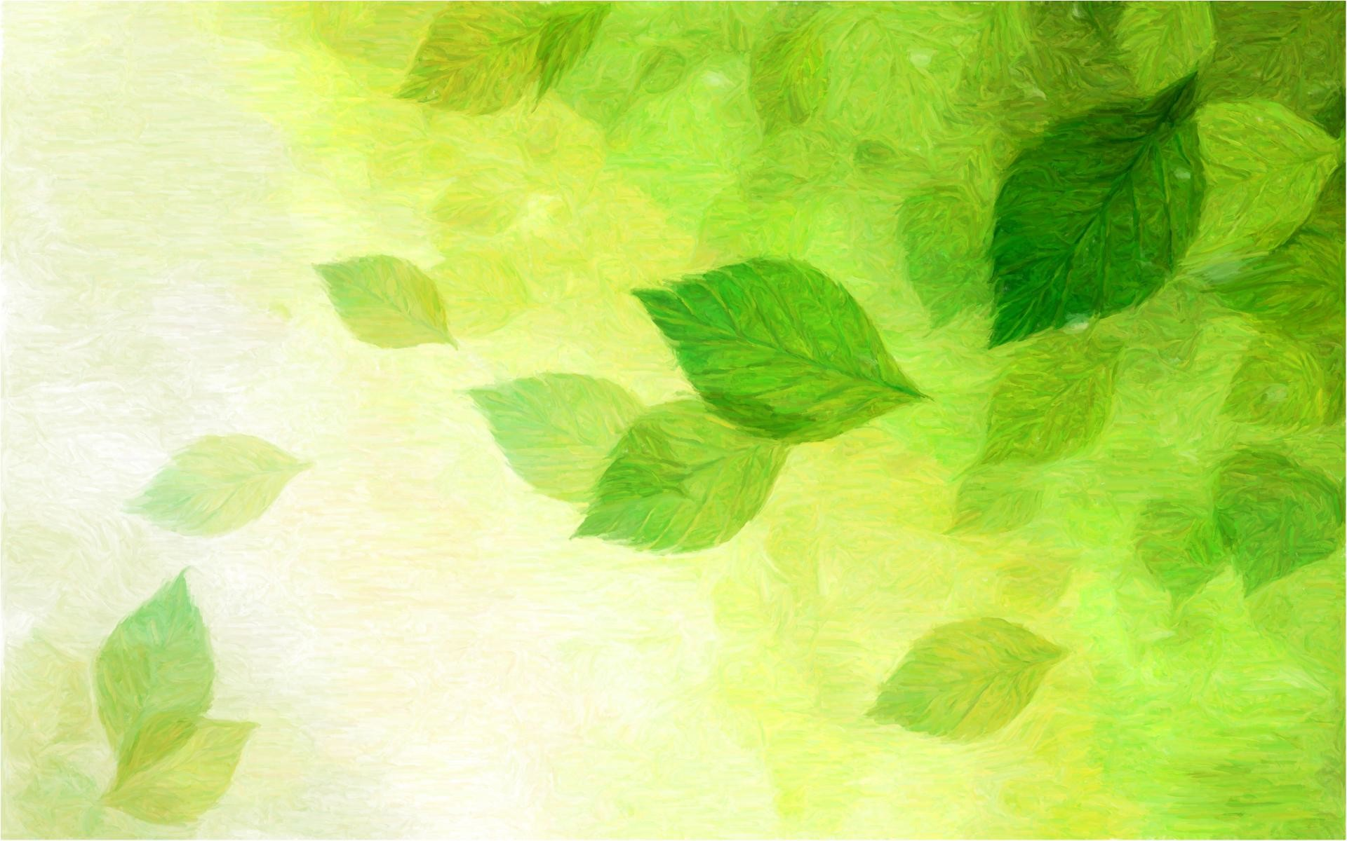 Green Wallpaper 14