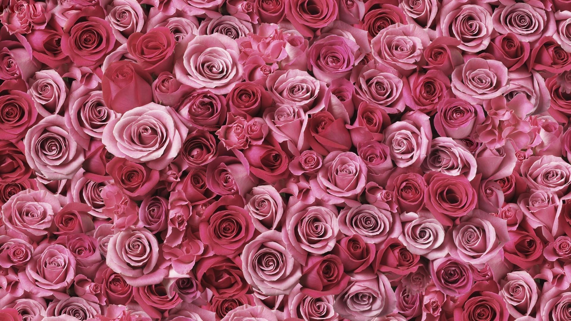 Glitter-pink-vs-wallpaper-phone