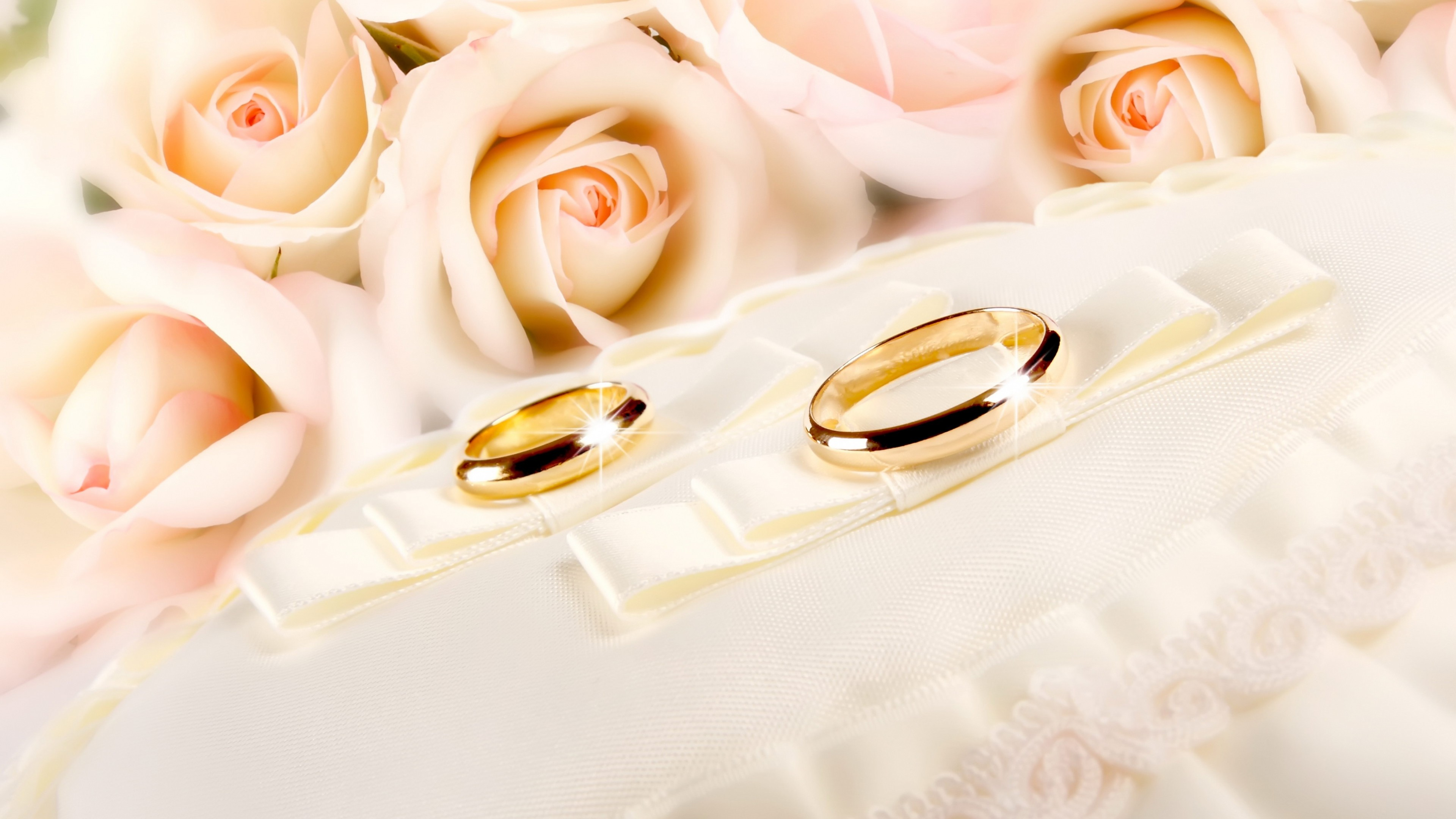 Rings-wedding-gold-glitter-fabric-flower-rose-backgrounds