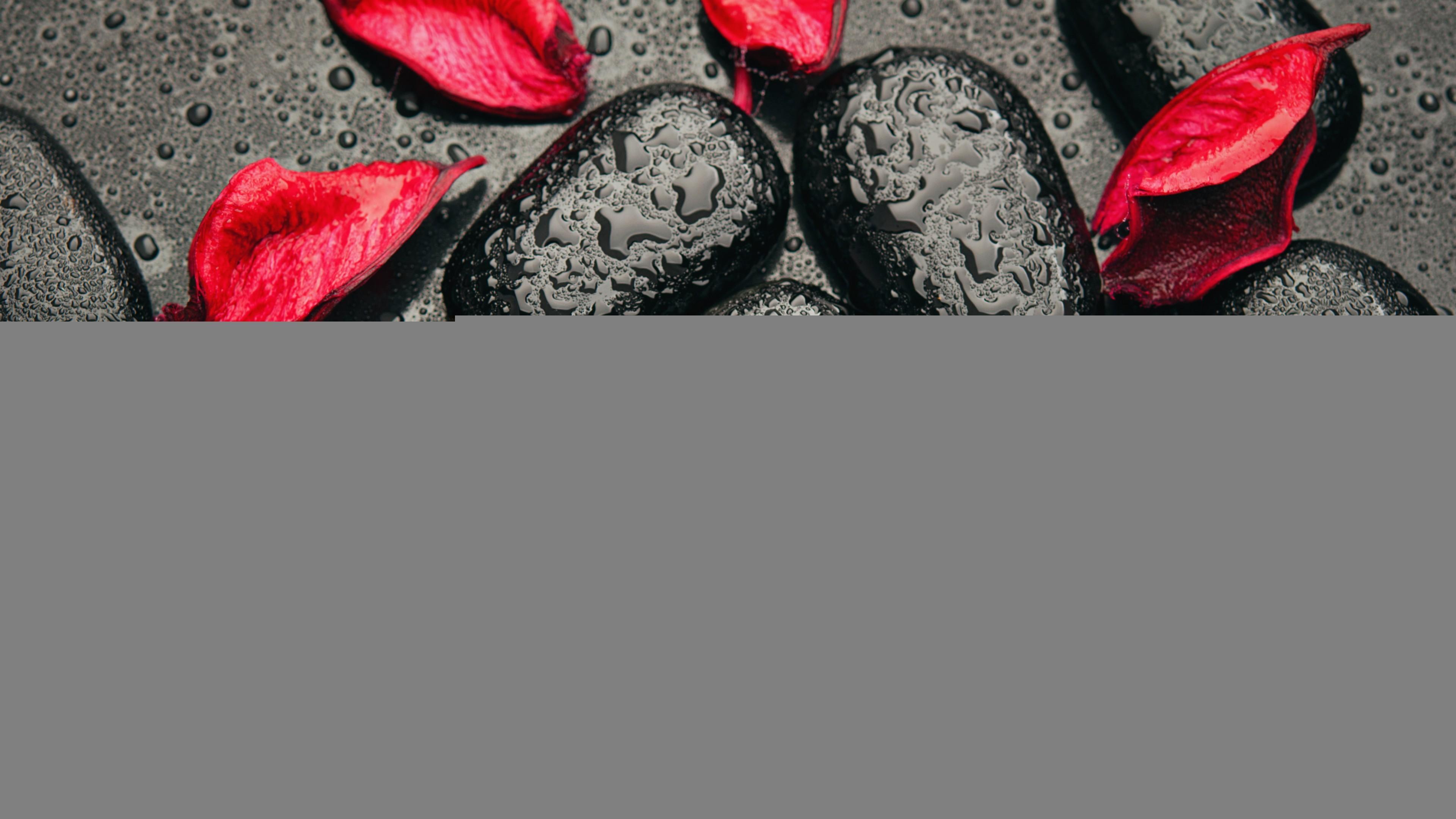 Tags: Red petals, Black stones, 4K