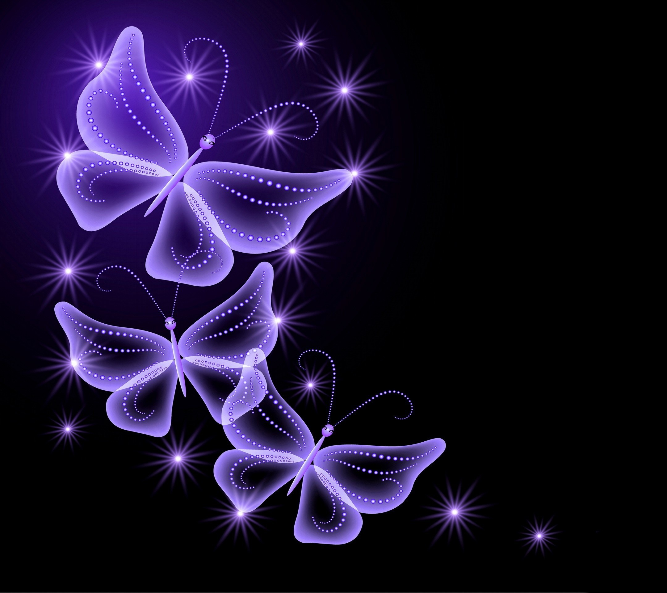 Purple Rose Background Wallpaper   Back > Wallpapers For > Purple Rose  Butterfly Background