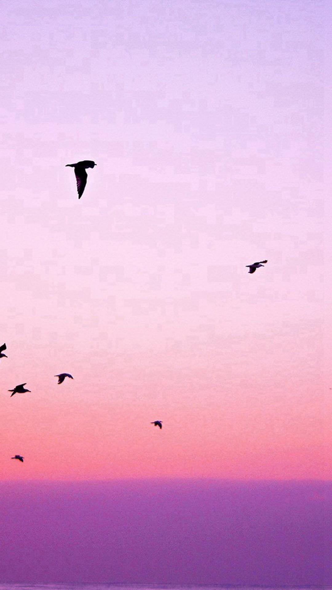 Sky Bird Pink Red Sunset Nature #iPhone #6 #wallpaper