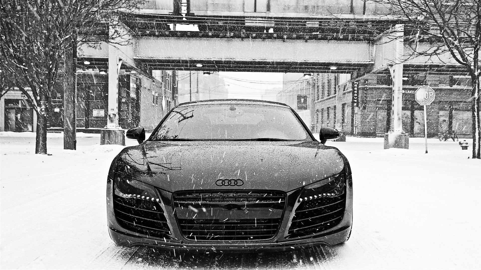 Black and White Audi in Snow HD Wallpaper in Full HD from the Cars  category. Tags: Audi Black and White, front view, snow, Winter
