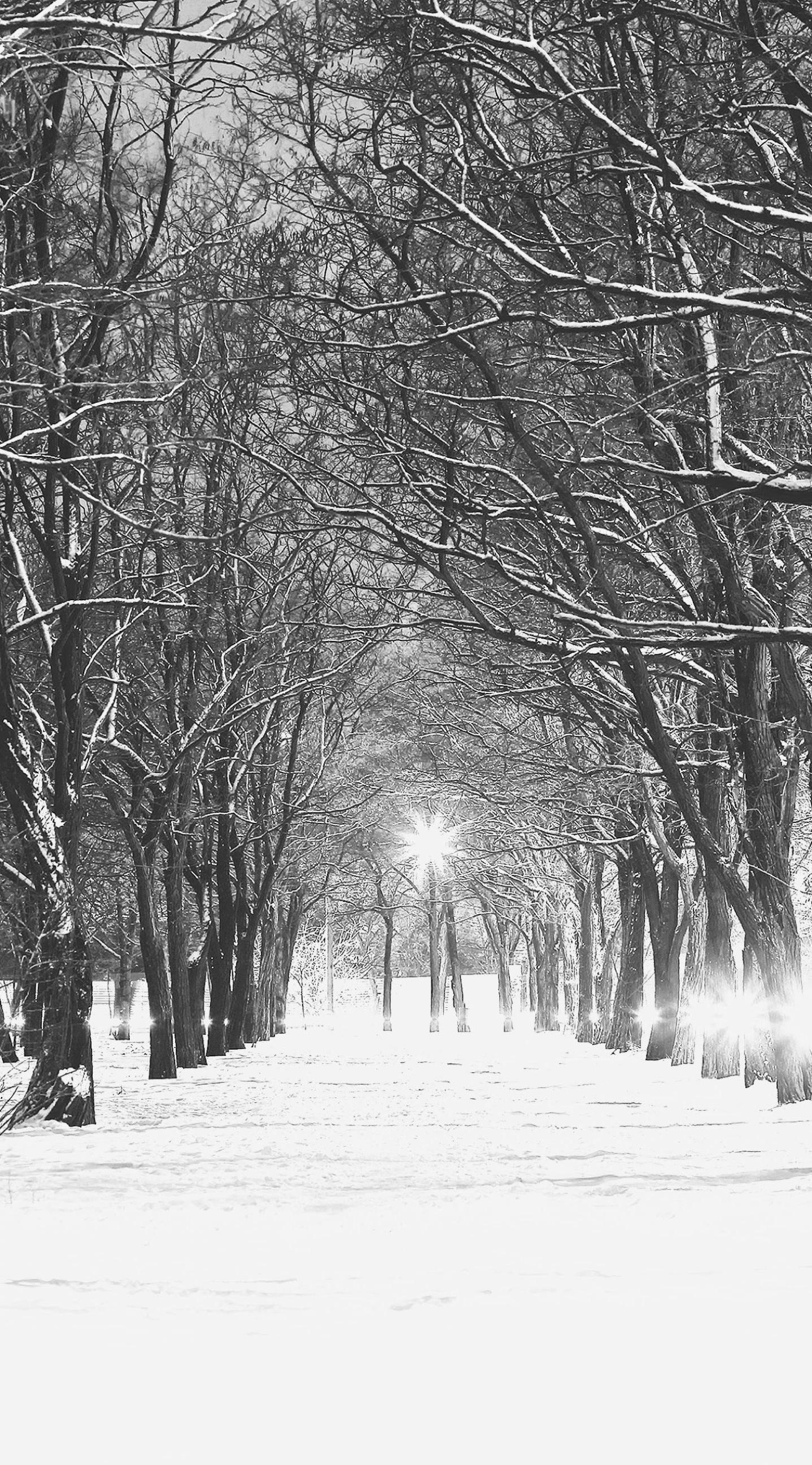 … monochrome landscape ki snow wallpaper sc iphone6splus …