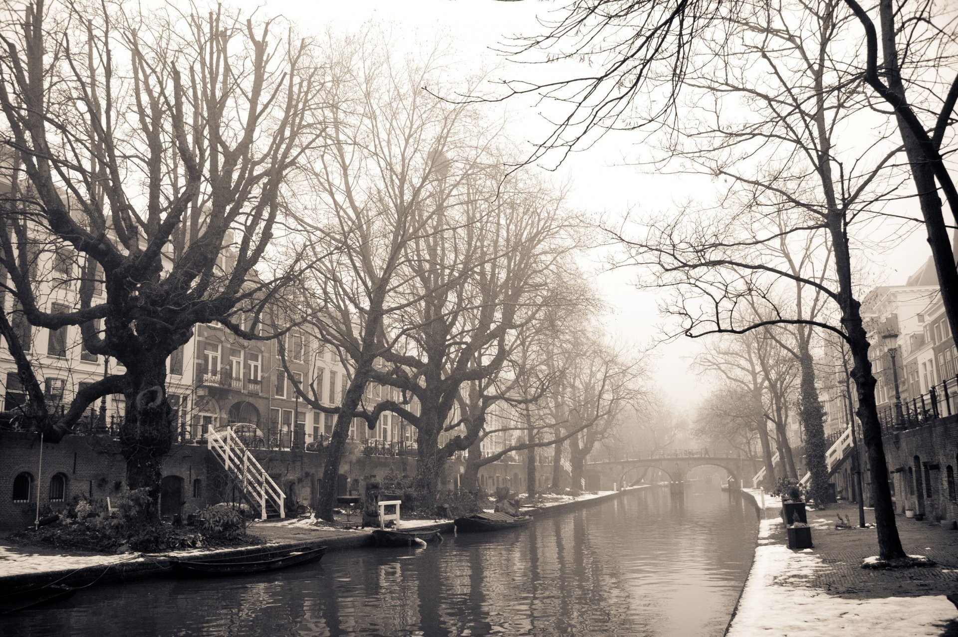 town amsterdam amsterdam the netherlands street house buildings bridge  river tree winter snow photo black white
