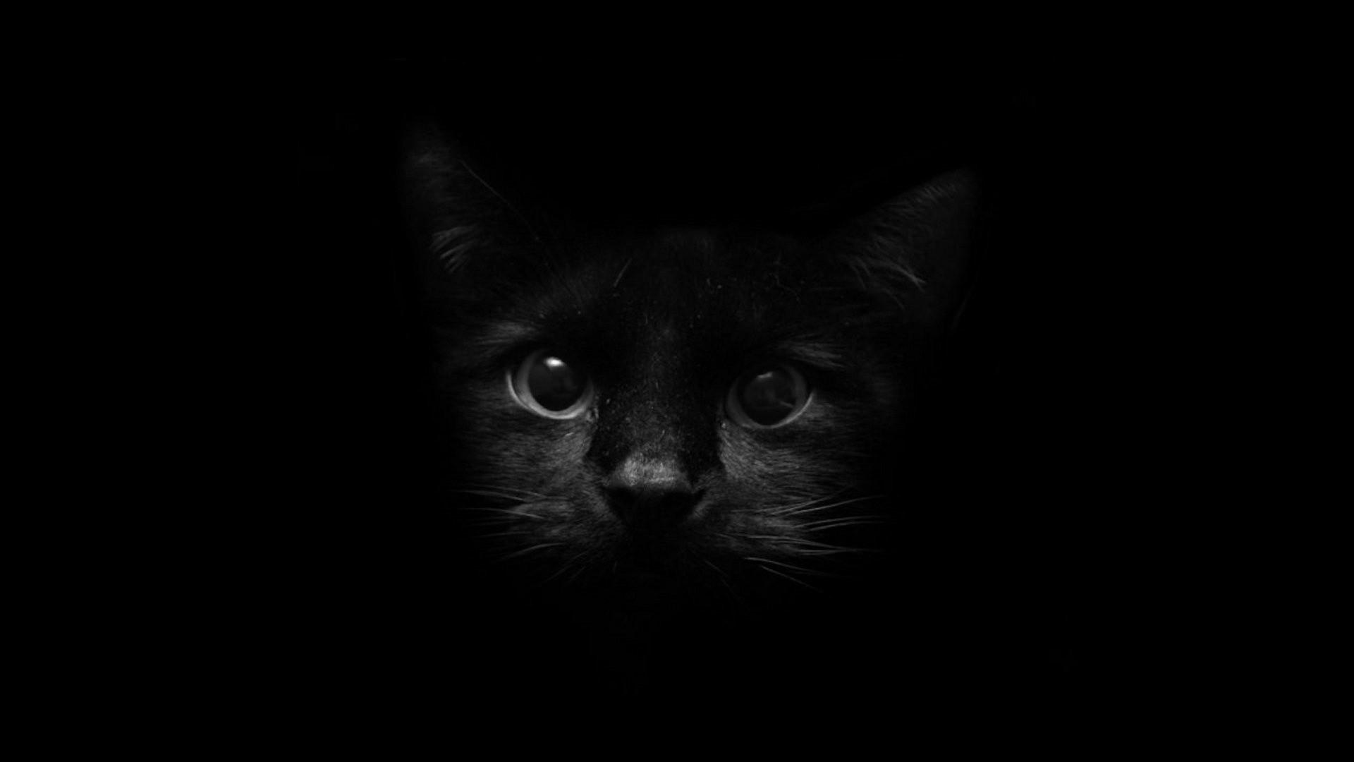 Black Soul HD desktop wallpaper : High Definition : Fullscreen 1920×1080