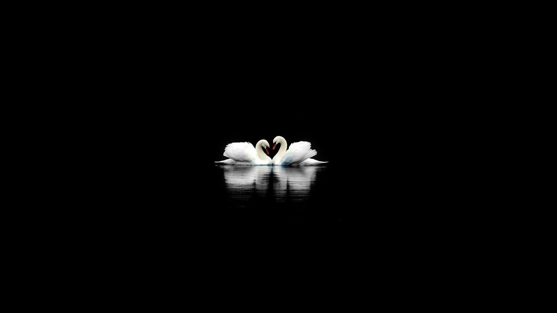 Black and White 1080p Wallpaper