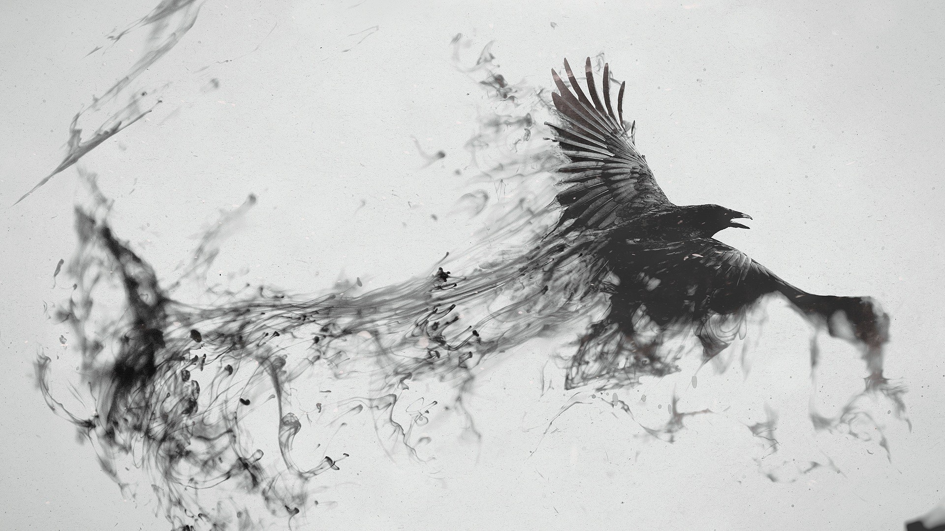 Preview wallpaper raven, bird, flying, smoke, black white 1920×1080