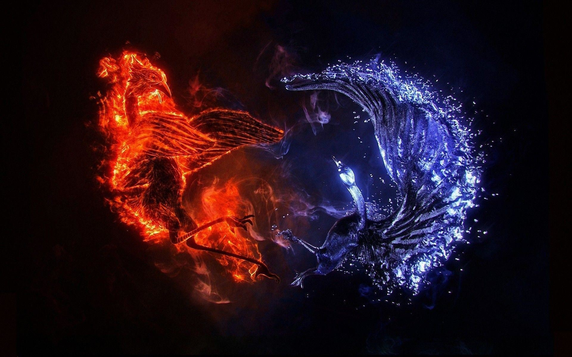 Blue And Red Fire Wallpaper – images free download