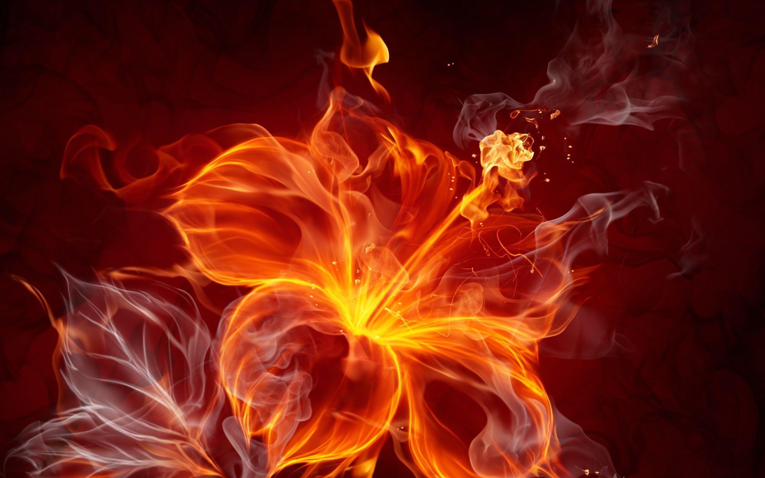 Blue Fire Flower Background Wallpaper Hd