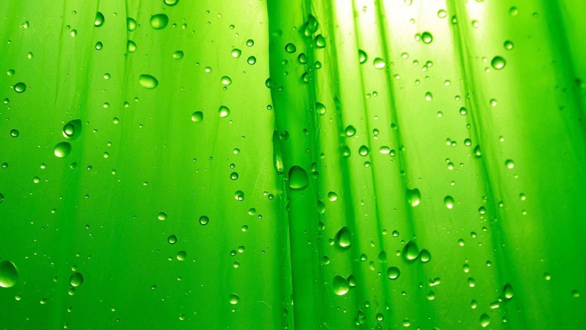 The Color Green – wallpaper.