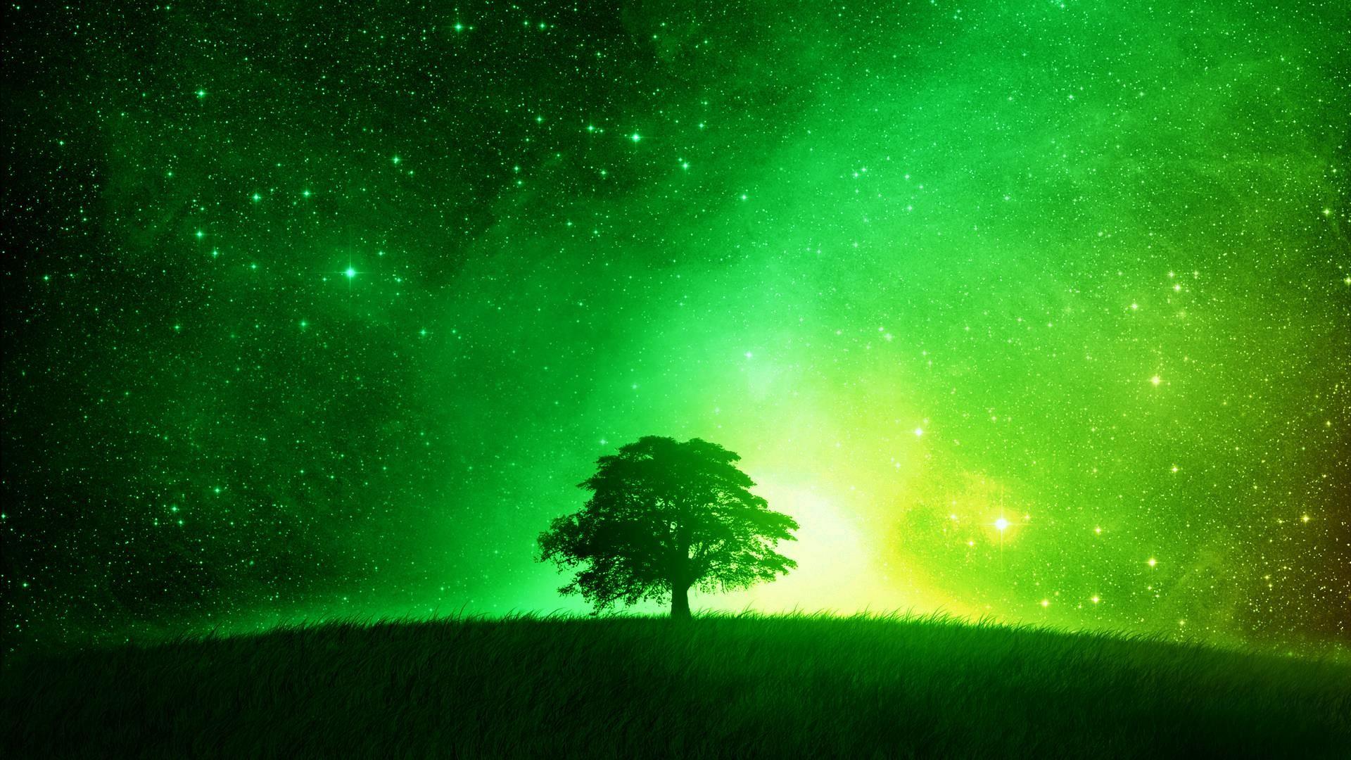Green Wallpaper 1920×1080 HD