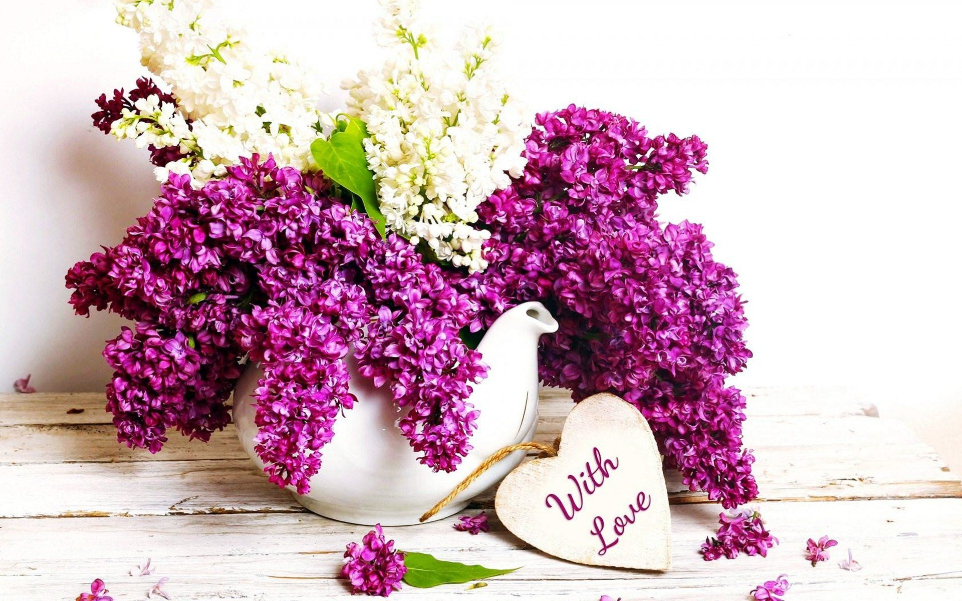 Lilac Purple Flowers with Love wallpaper thumb