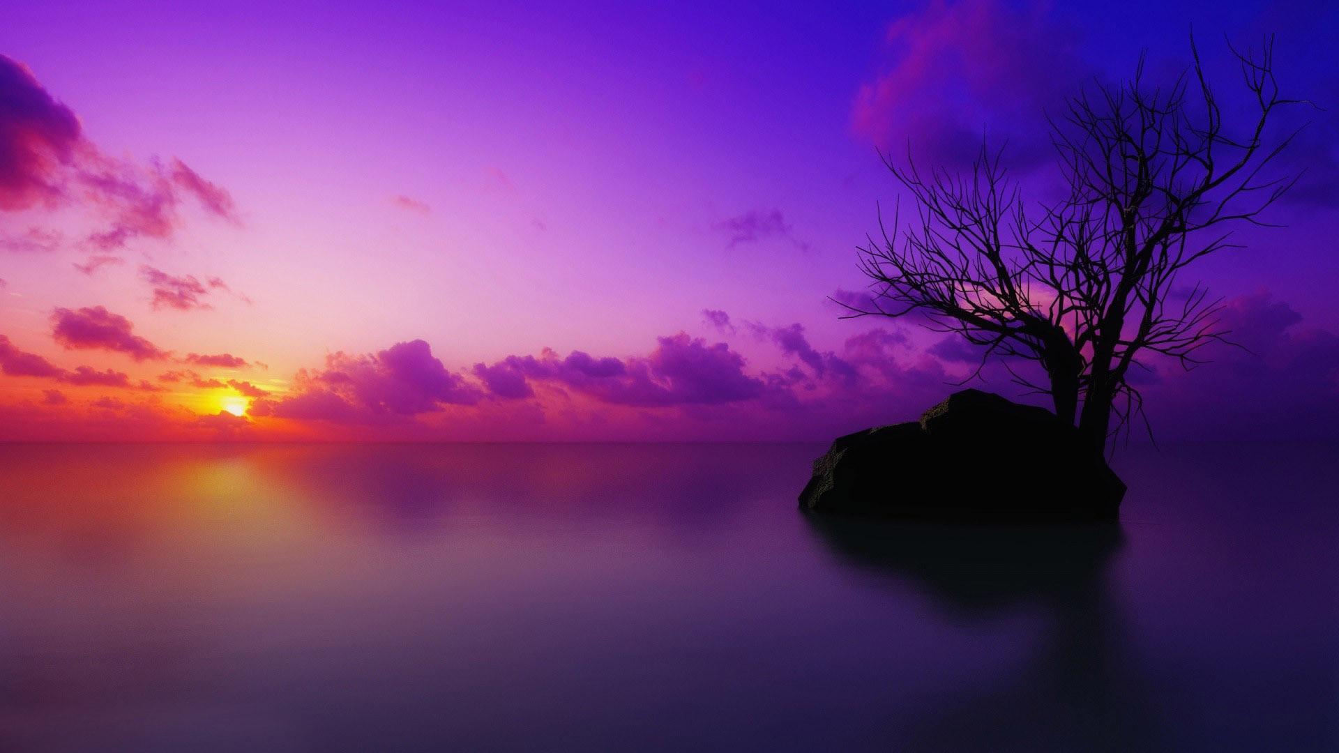 Purple sunset wallpaper – 805912
