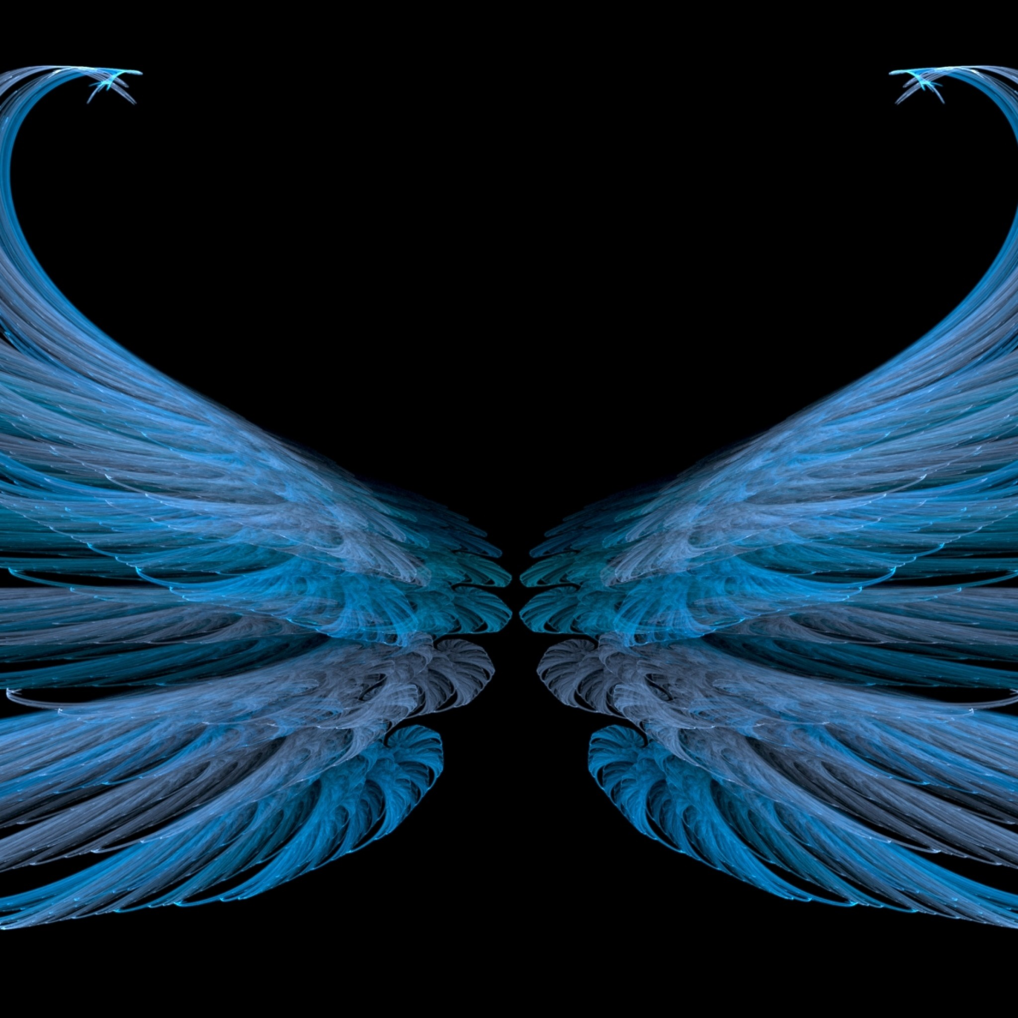 Preview wallpaper blue, black, wings, white, bright 2048×2048