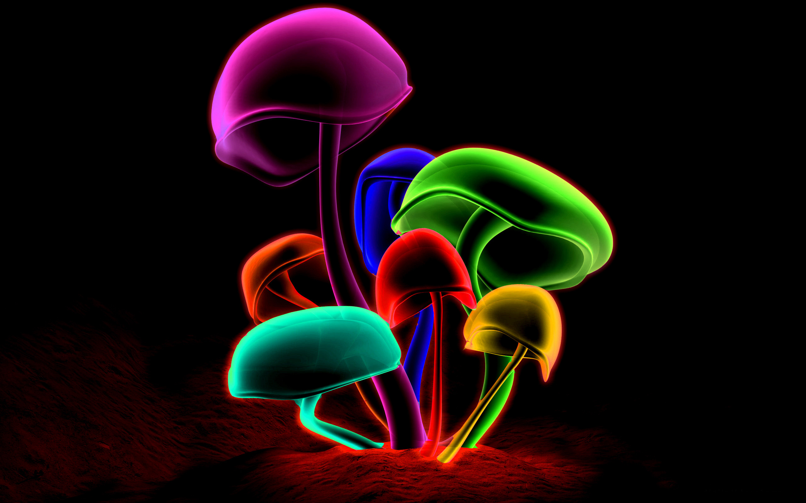 Colorful Mushrooms wallpaper with resolution up to – 21995