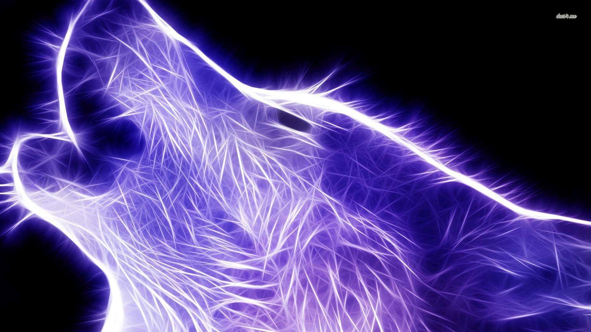 lightanimals | Animal Wallpaper Light cool animal hd wallpaper light shadow  – animals .