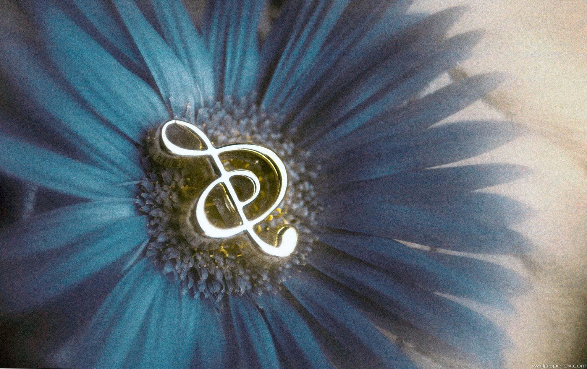 music notes in flower full hd wallpaper