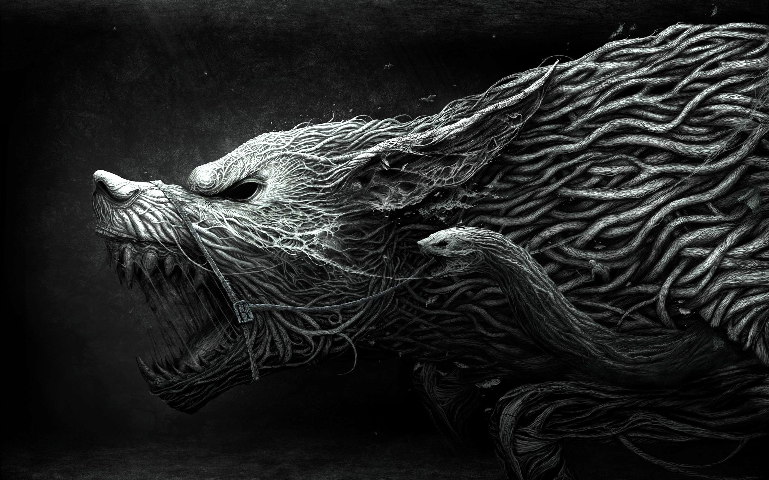 Wallpaper wolf, teeth, drawing, aggression, black, white