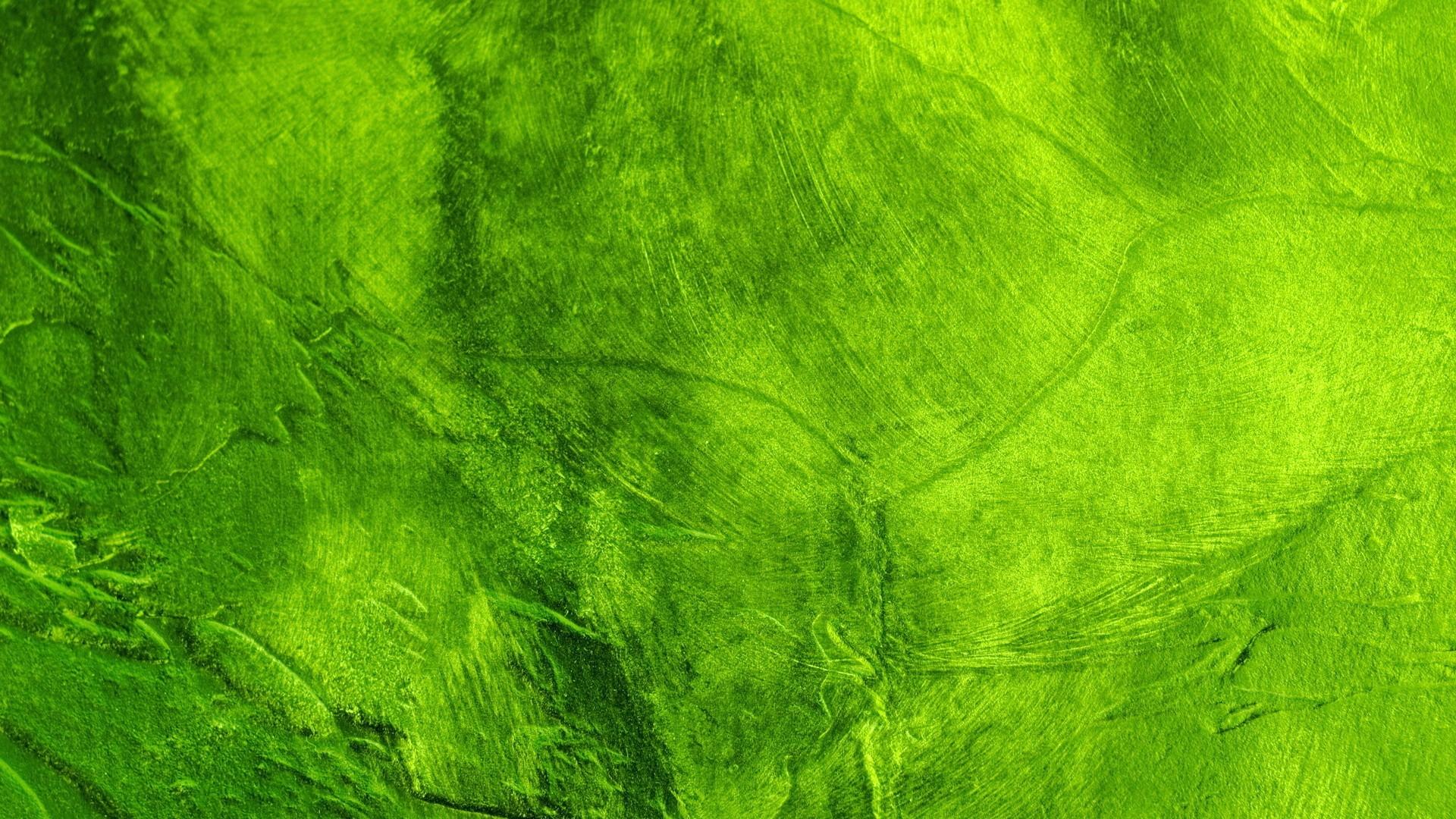 Abstract green network Wallpaper Pinterest Green wallpaper
