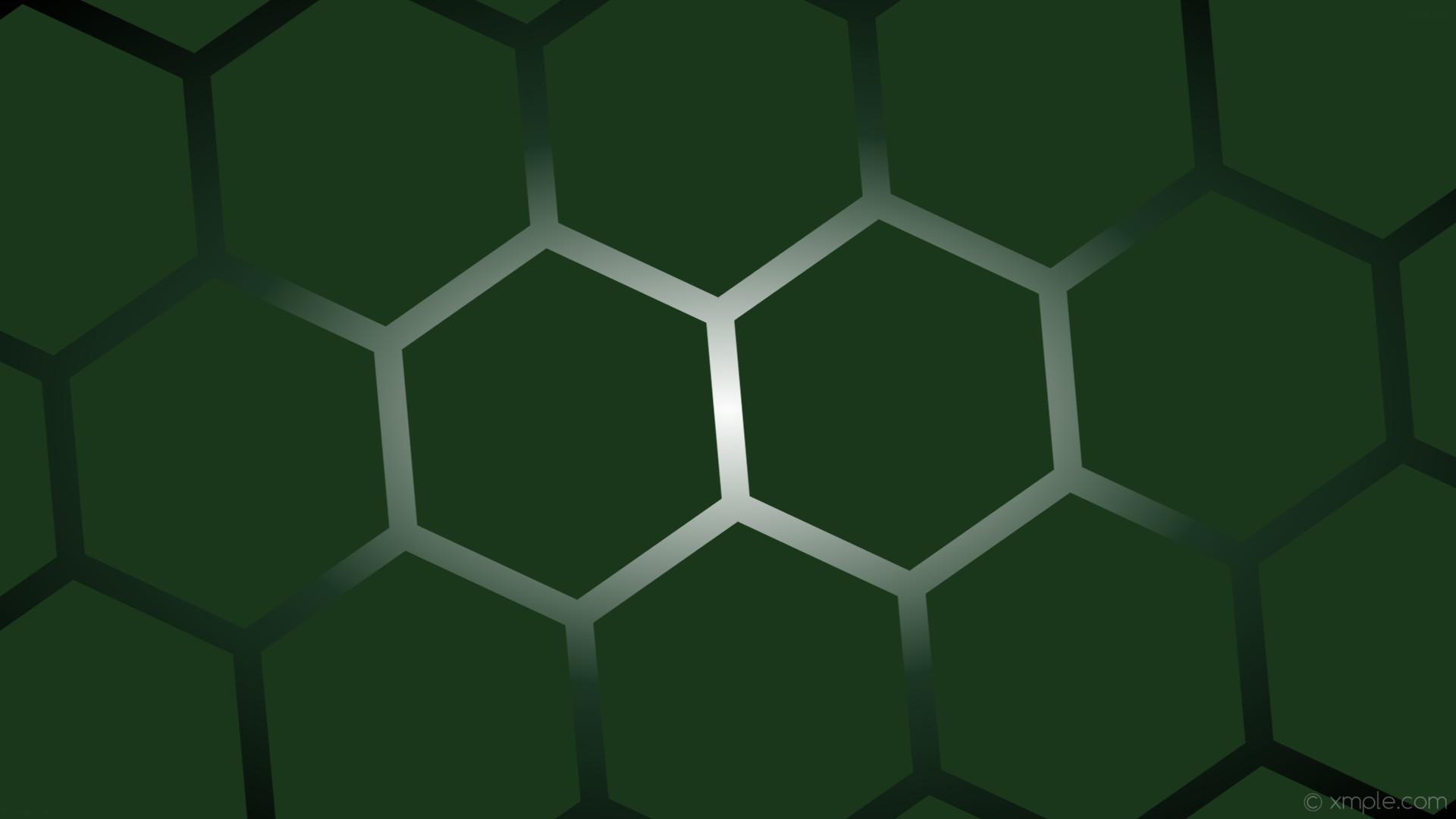 wallpaper gradient white black hexagon turquoise glow green dark green dark  turquoise #1b371b #ffffff