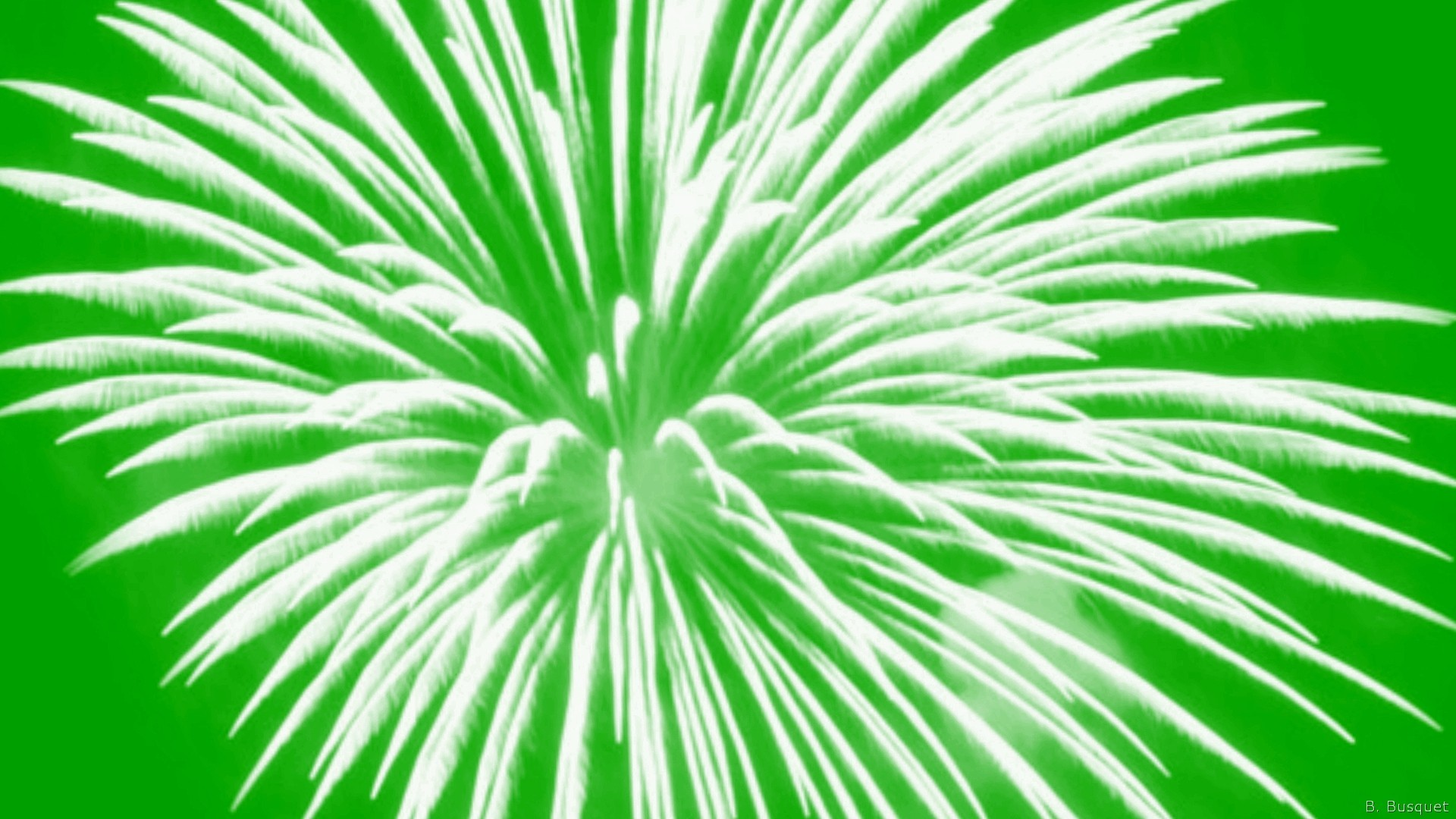 Green wallpaper with rectangles. White fireworks