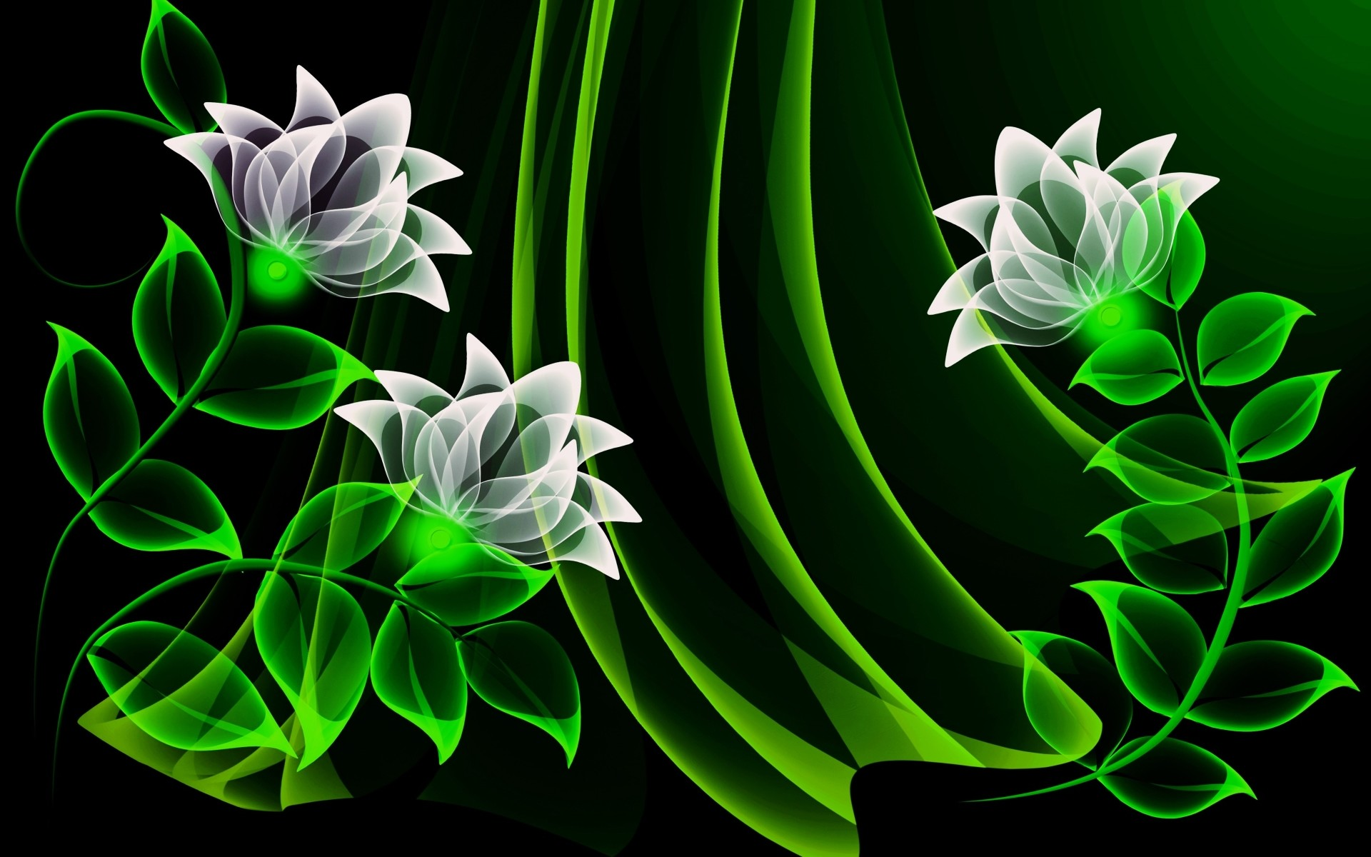 White Flowers & Green Leaves wallpapers and stock photos