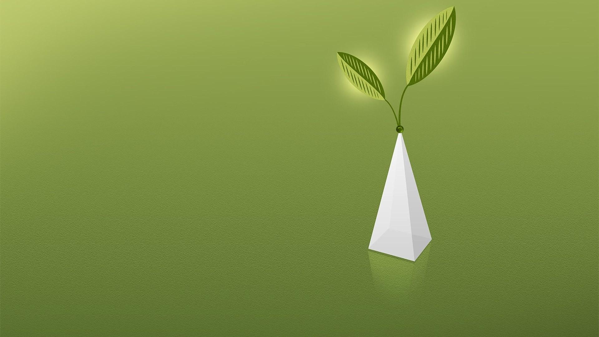 Wallpaper green, vase, white, form
