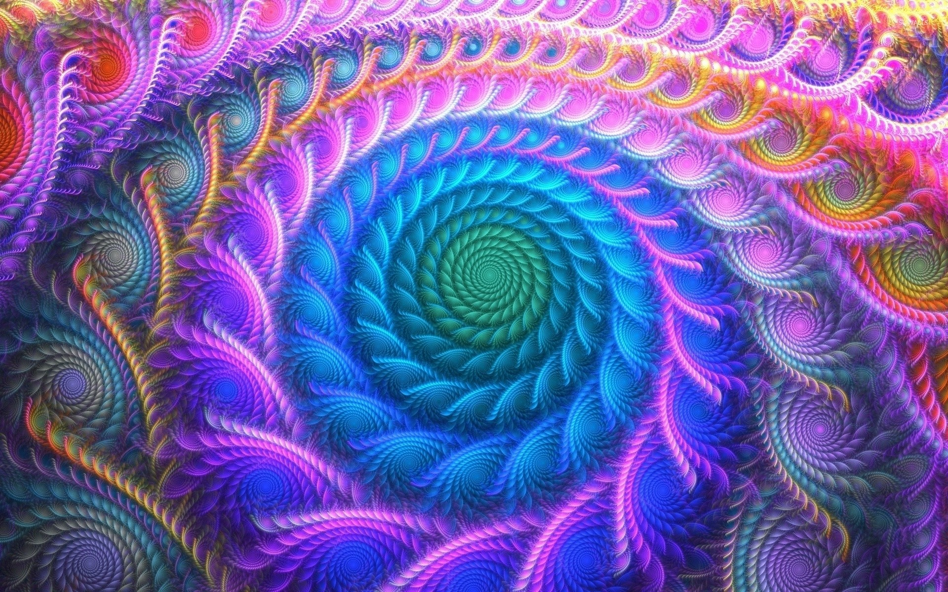 Green swirl inside the fractal curves wallpaper jpg