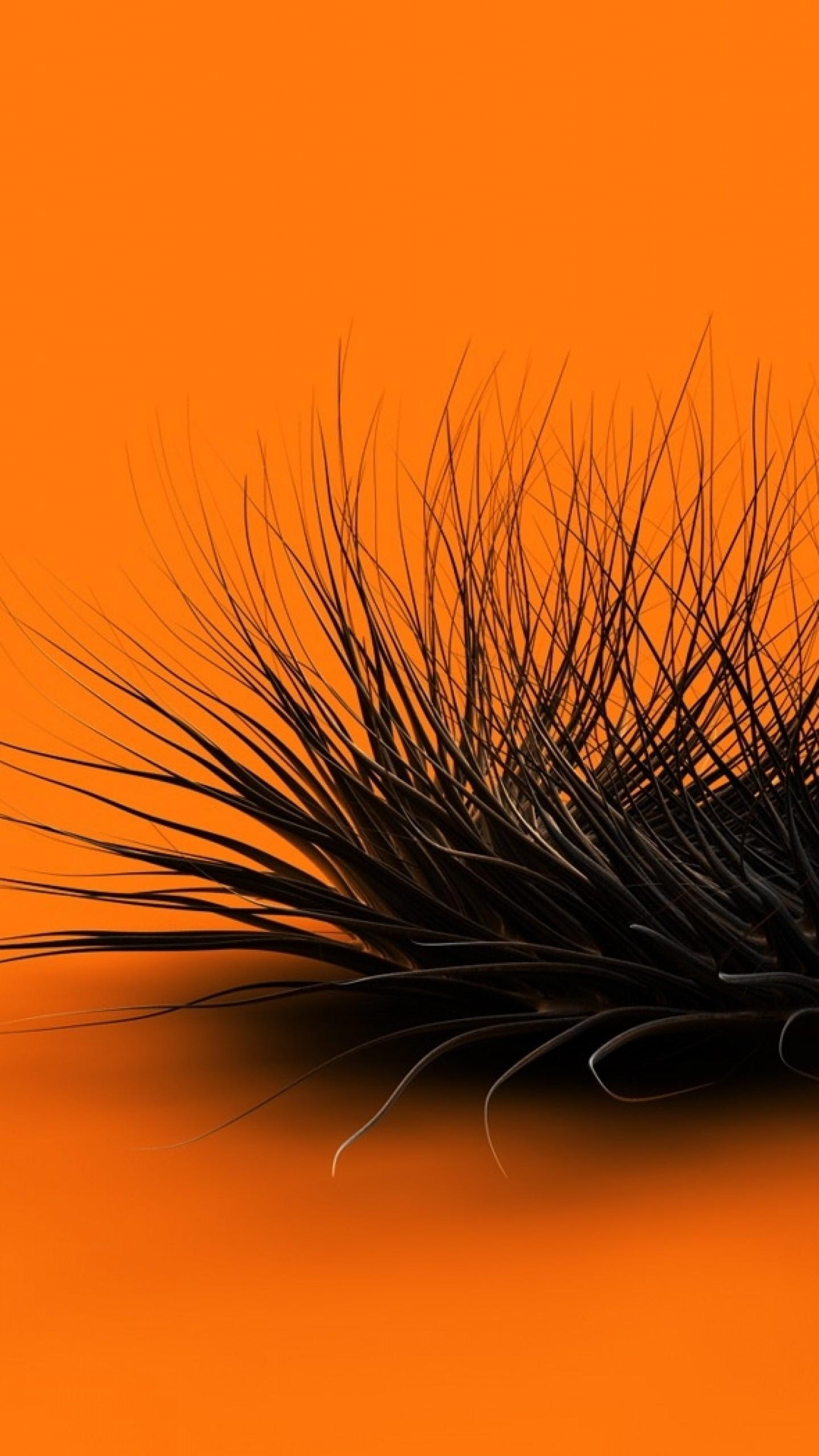 Preview wallpaper orange, black, feathers, form 1440×2560