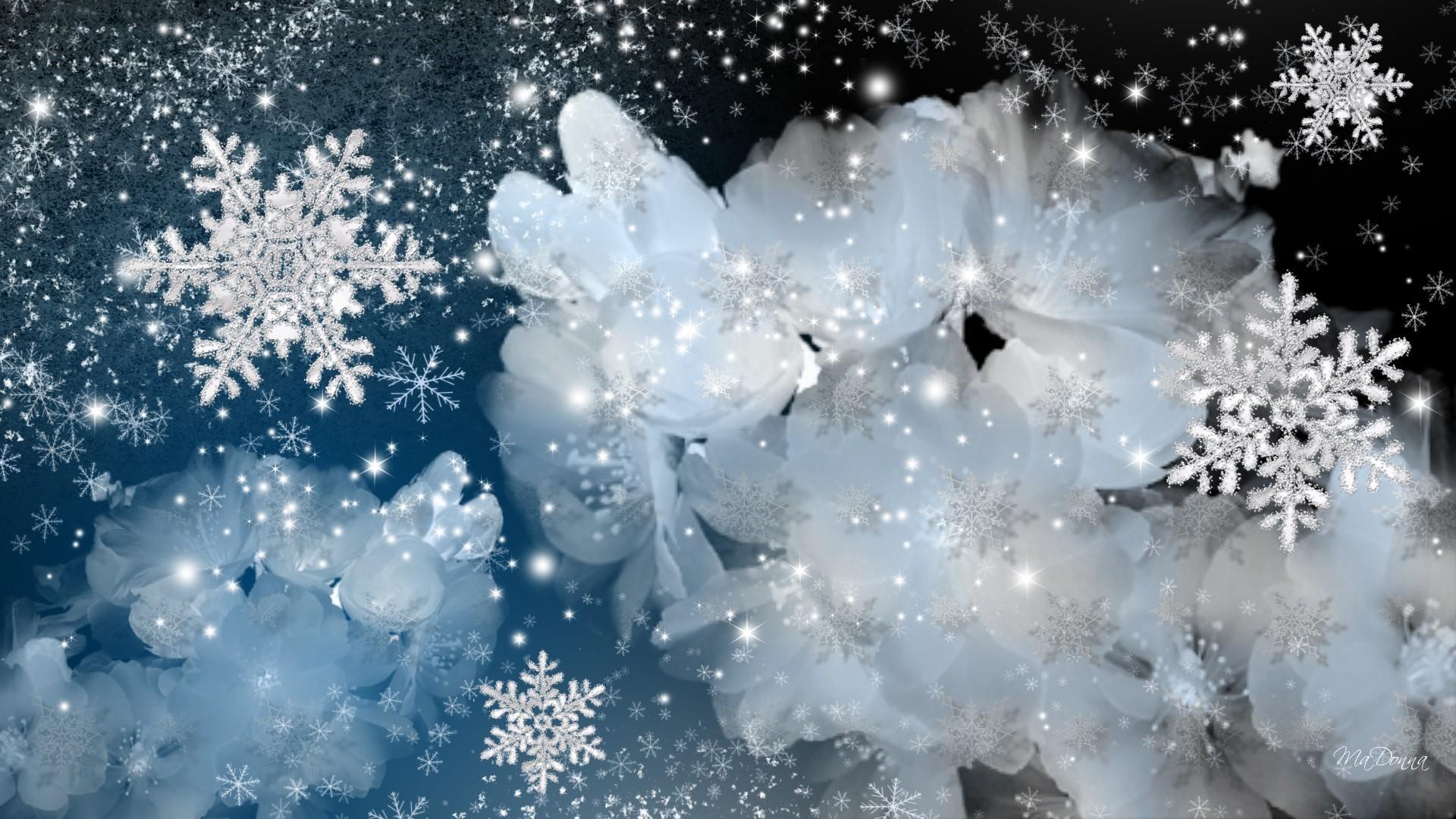 Flowers – Seasons Winter Spring Snow Blossoms Persona Blue Flowers Sakura  Snowflakes Firefox Cherry Apple Change