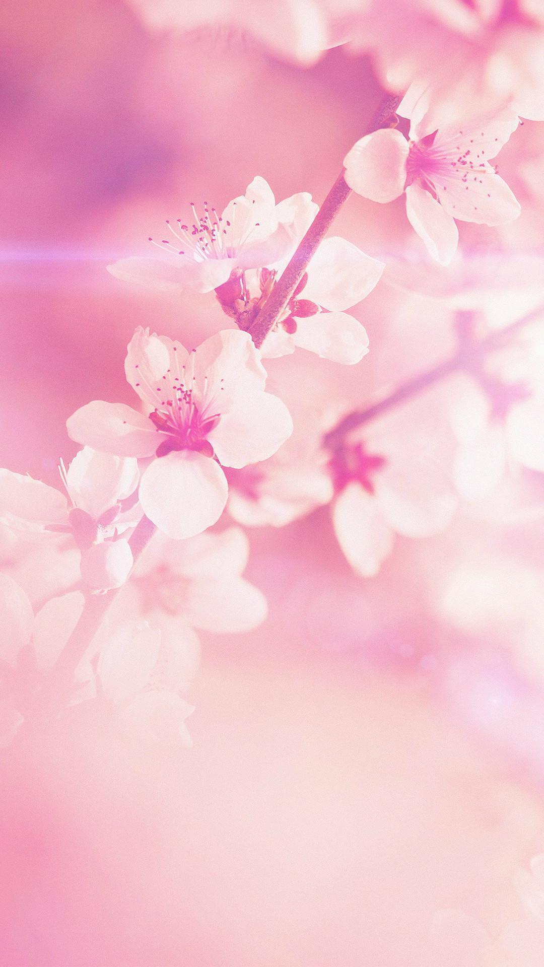 Explore Pink Wallpaper Iphone, Nature Wallpaper, and more!