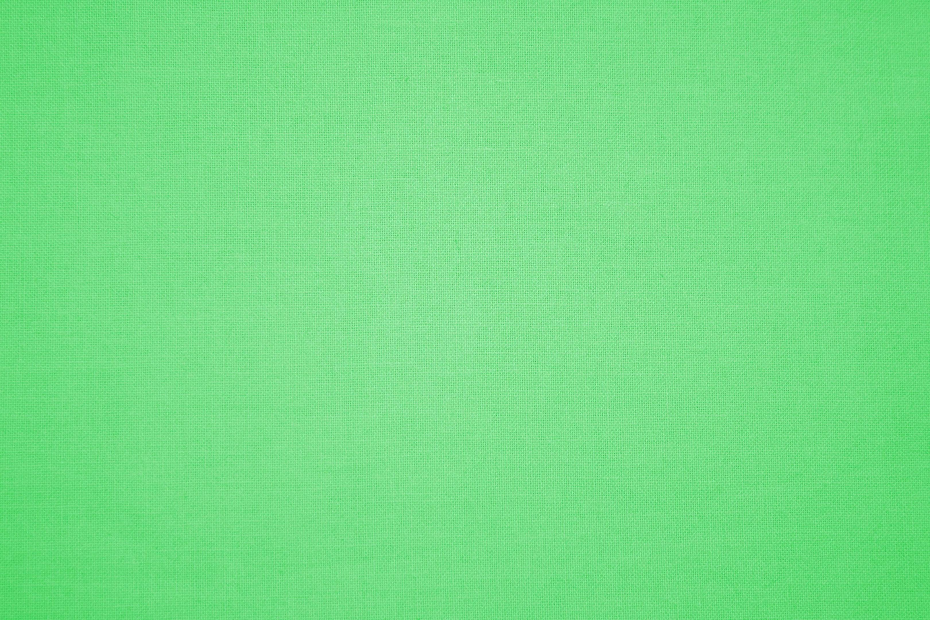 Light Green Wallpaper Desktop 23994 HD Pictures | Top Background Free