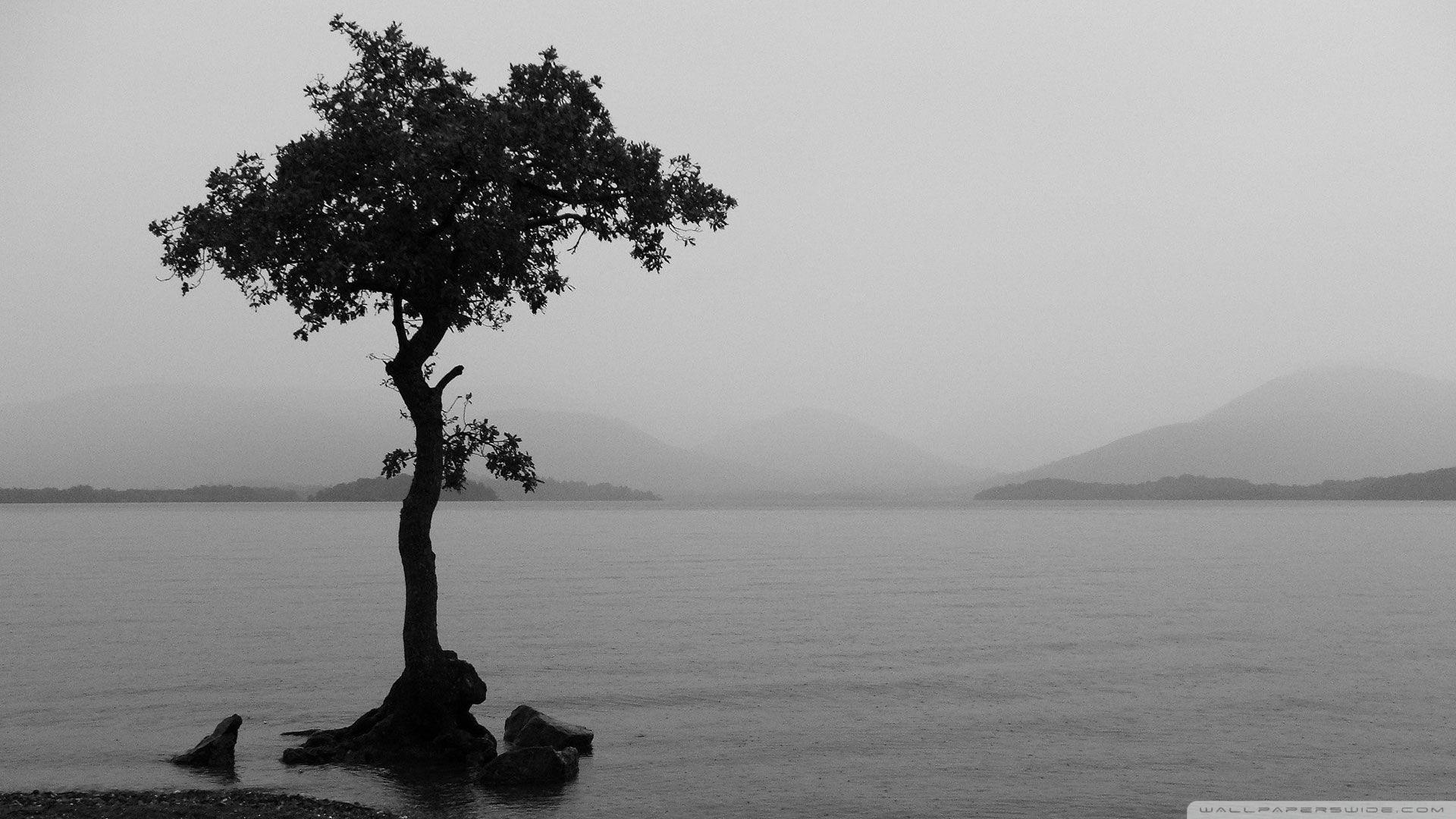 9. black-and-white-wallpaper9-600×338