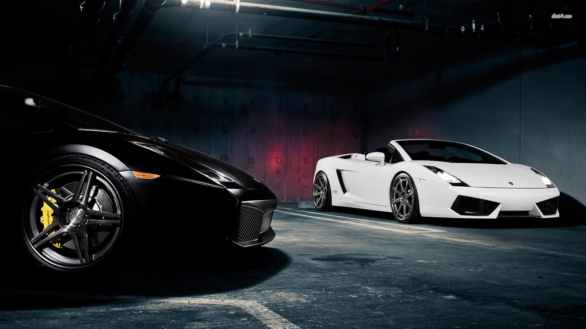 Lamborghini Sports Cars Black and White HD Wallpaper HD Wallpaper of