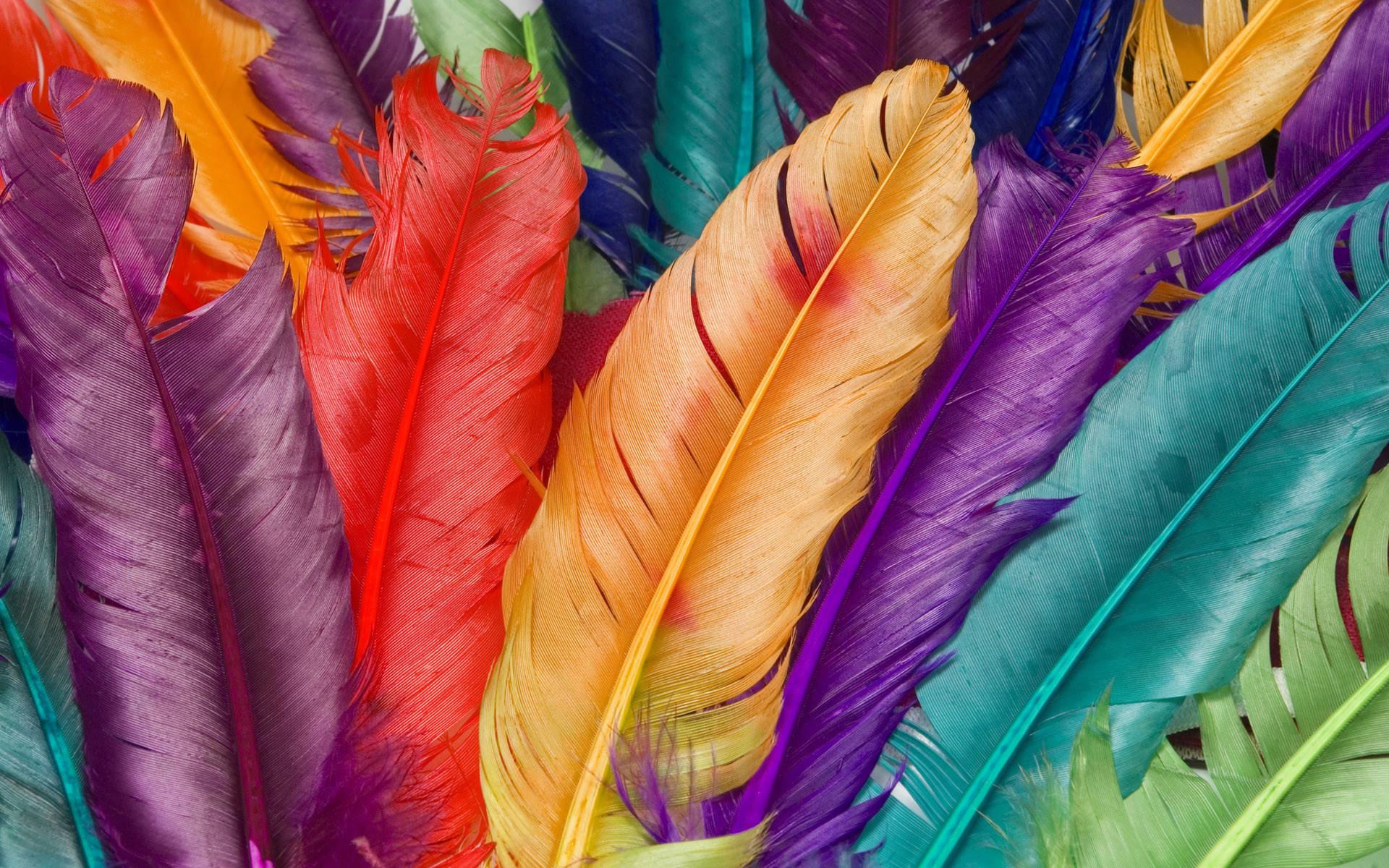 Colorful Desktop 1080p HD Wallpapers