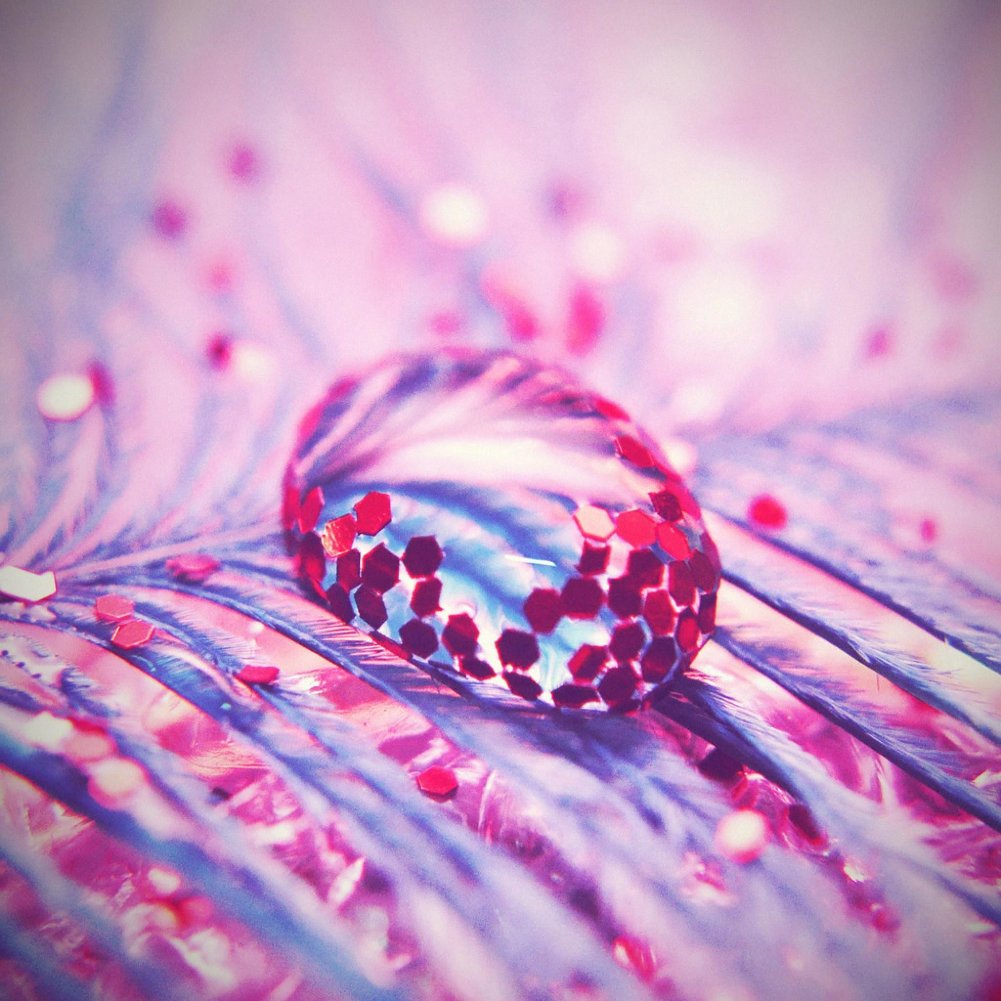 Dreamy ethereal cute pink and blue feather glitter water drop fine art  photography bokeh home decor