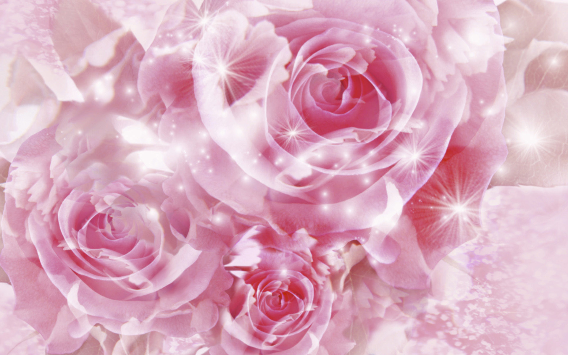 Pretty Pink Roses Wallpaper – Pink (Color) Photo (34590746) – Fanpop