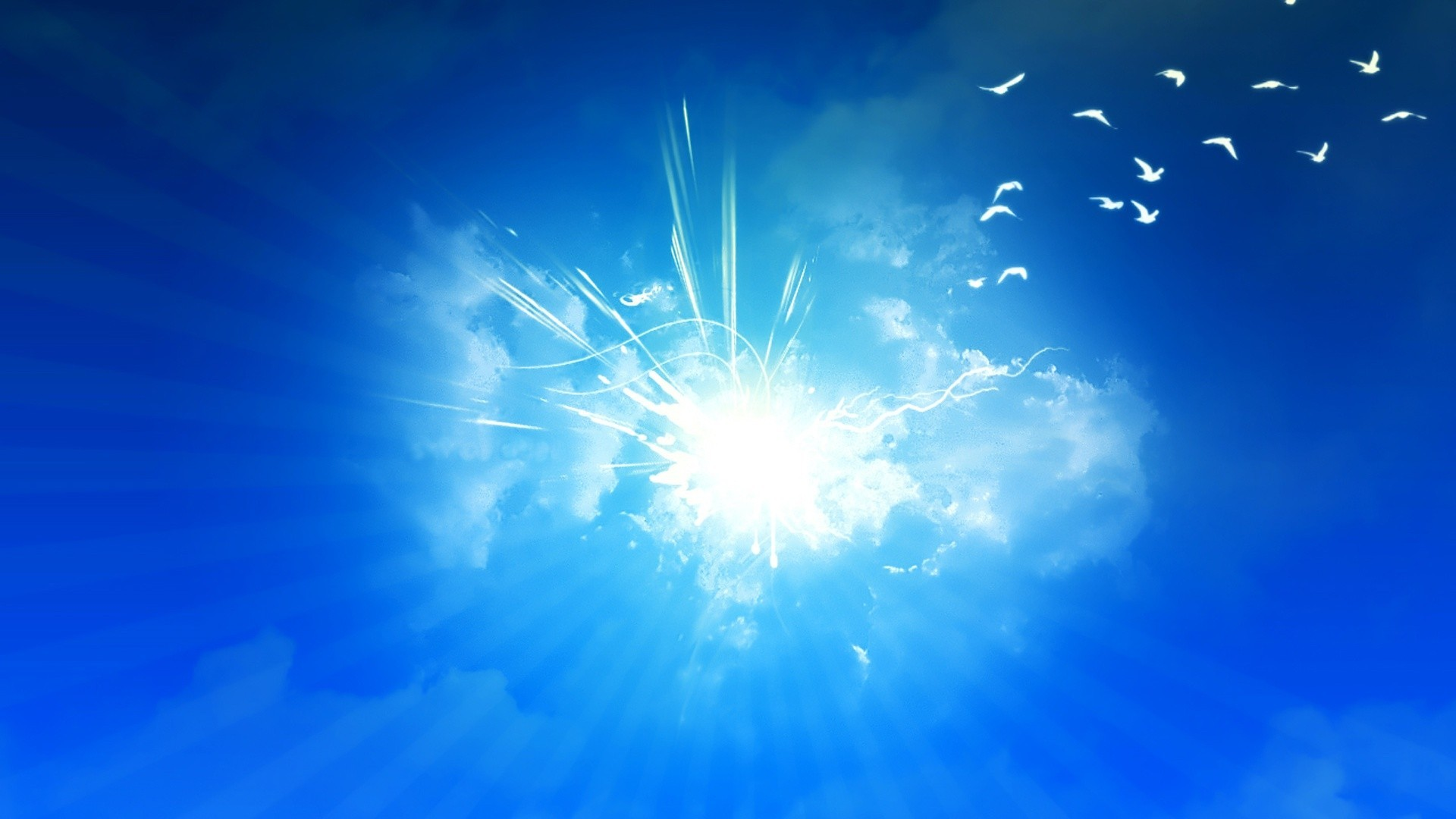 Seagull Fantastic Outstanding Nice Birds Sunshine Beautiful Wonderful  Sunlight Color Pretty Awesome Heaven Stunning Blue Sun Sky Amazing Hope  Light …
