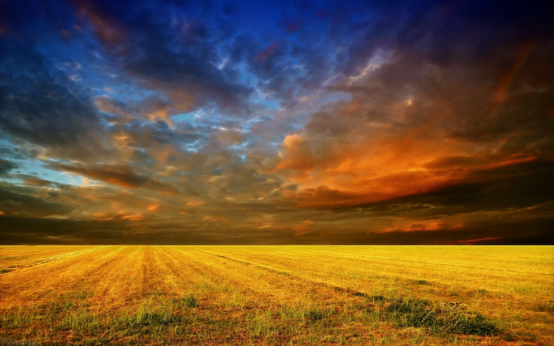 Yellow Field & Red Blue Sky