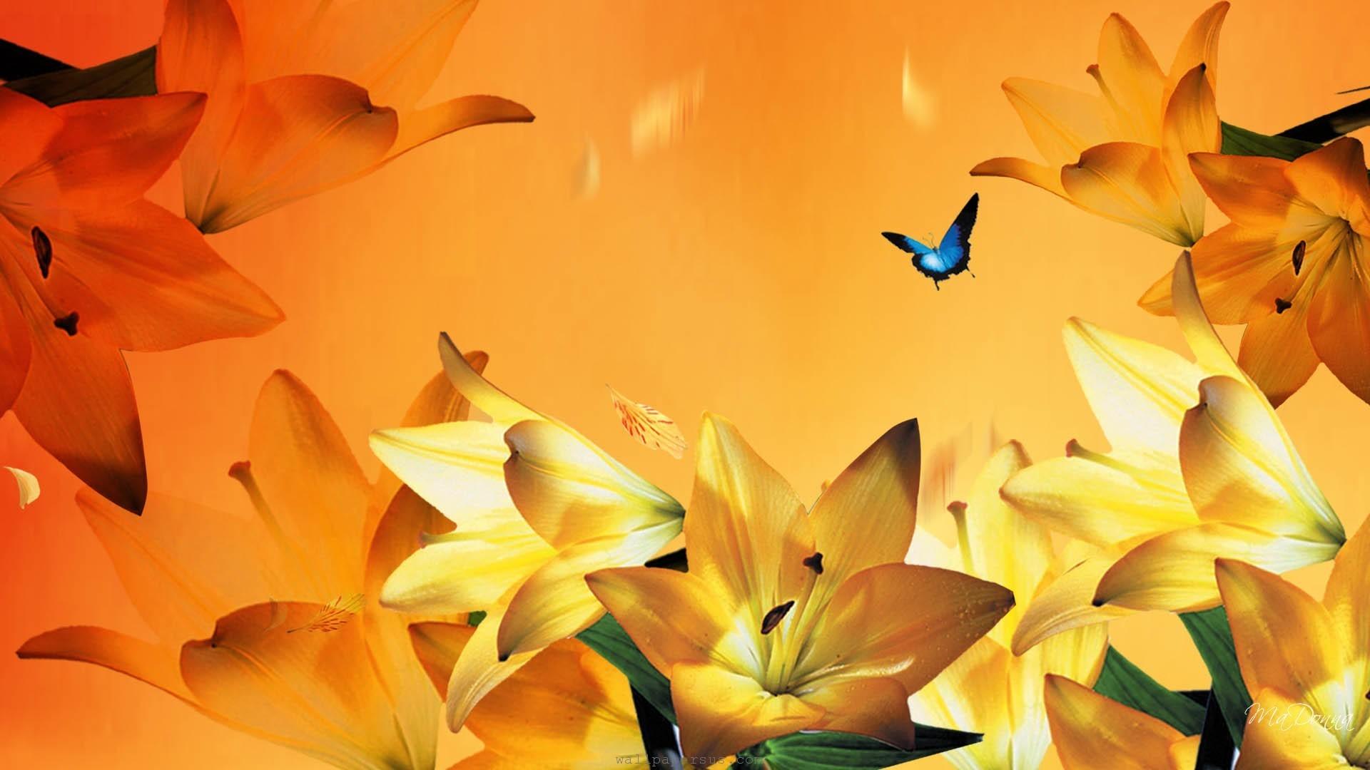 Floral, orange, petals, summer, yellow, lilies, flowers, gilded, ·  Butterfly WallpaperLilies FlowersBlue …