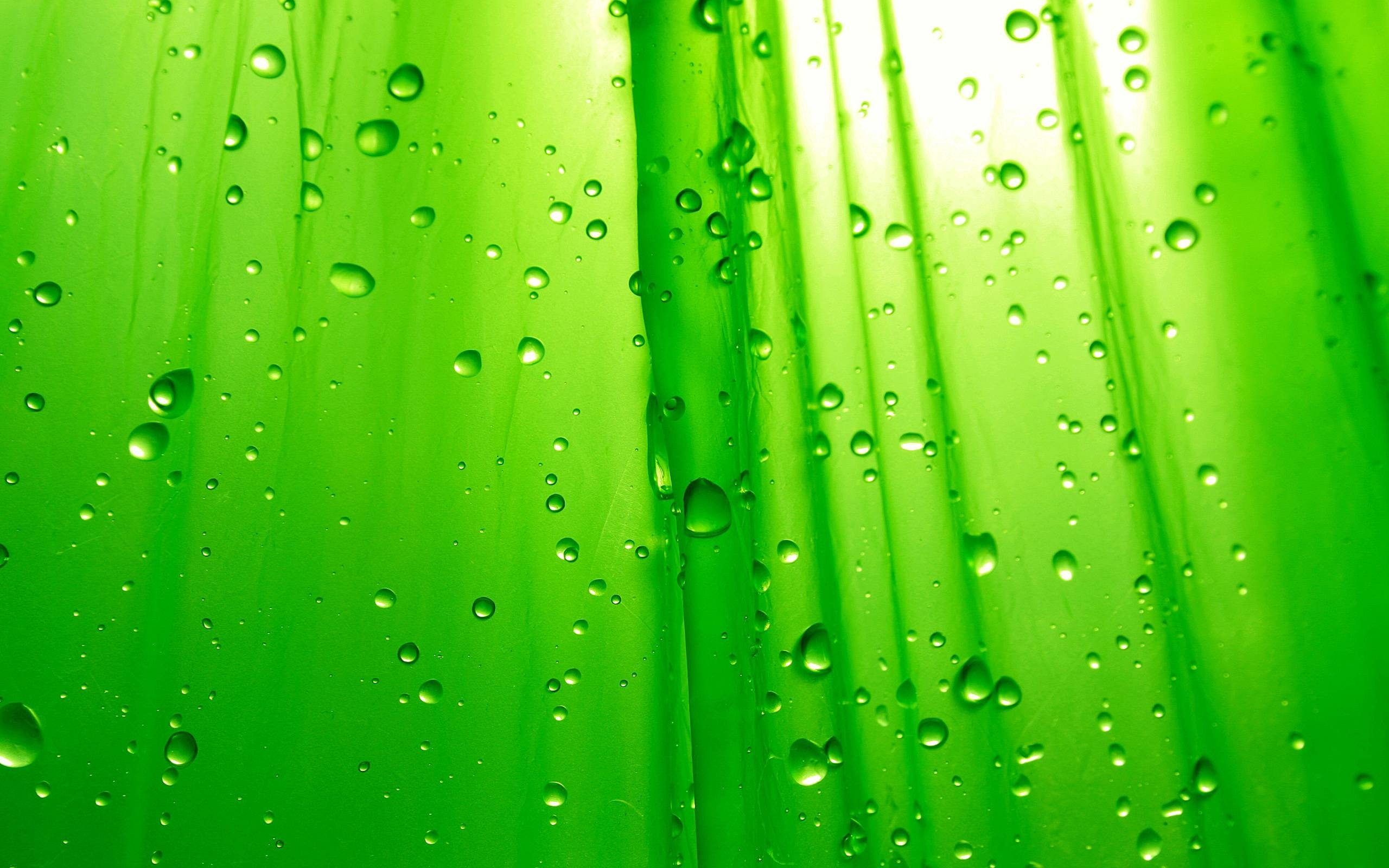 Green HD Wallpapers Widescreen Backgrounds Download